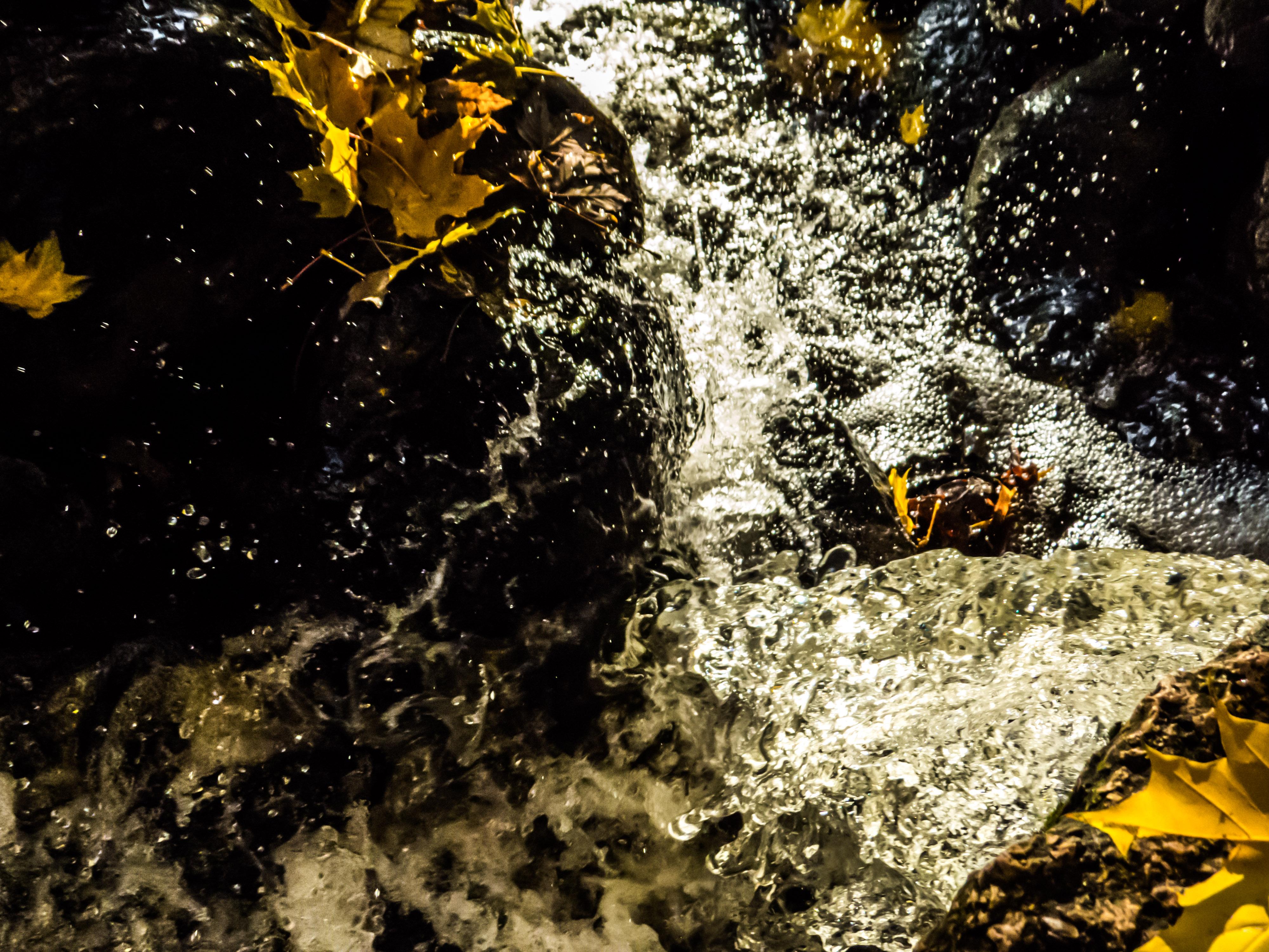 Autumn beauty, Autumn, Water, Vivid, Trees, HQ Photo