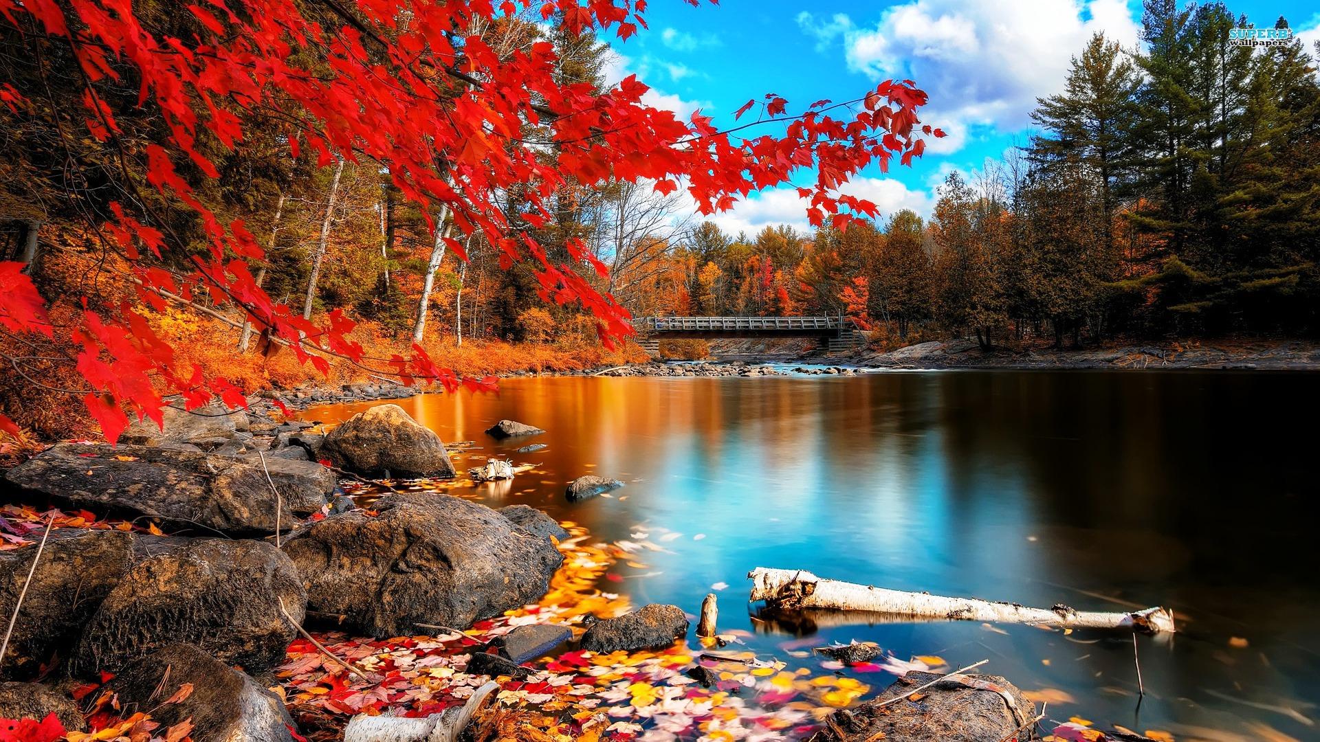 HD Lake Autumn Beauty 2158 - Nature HD Desktop Wallpaper