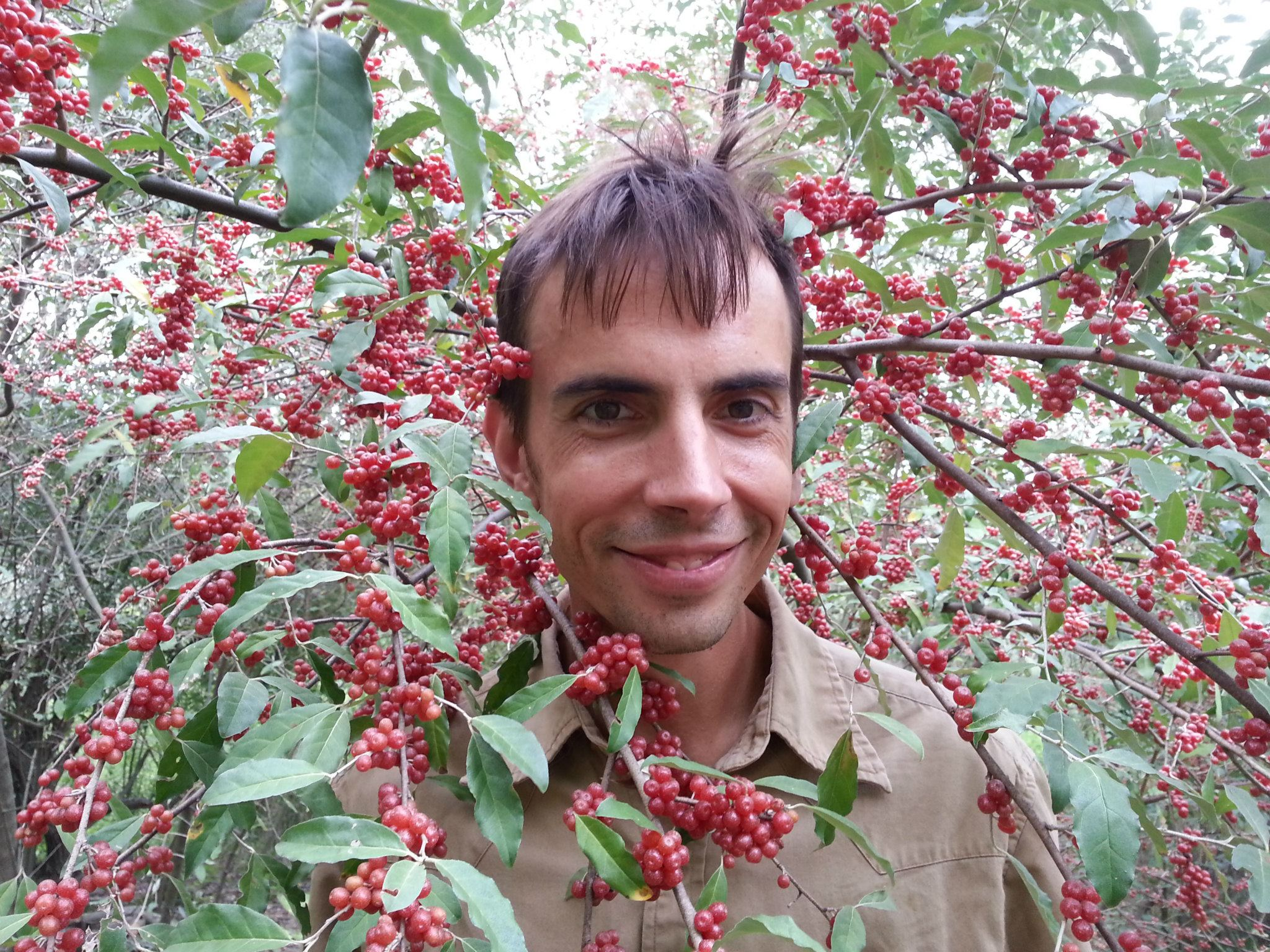 Autumn Berry: Chicago's Newest Startup Fruit – Techli