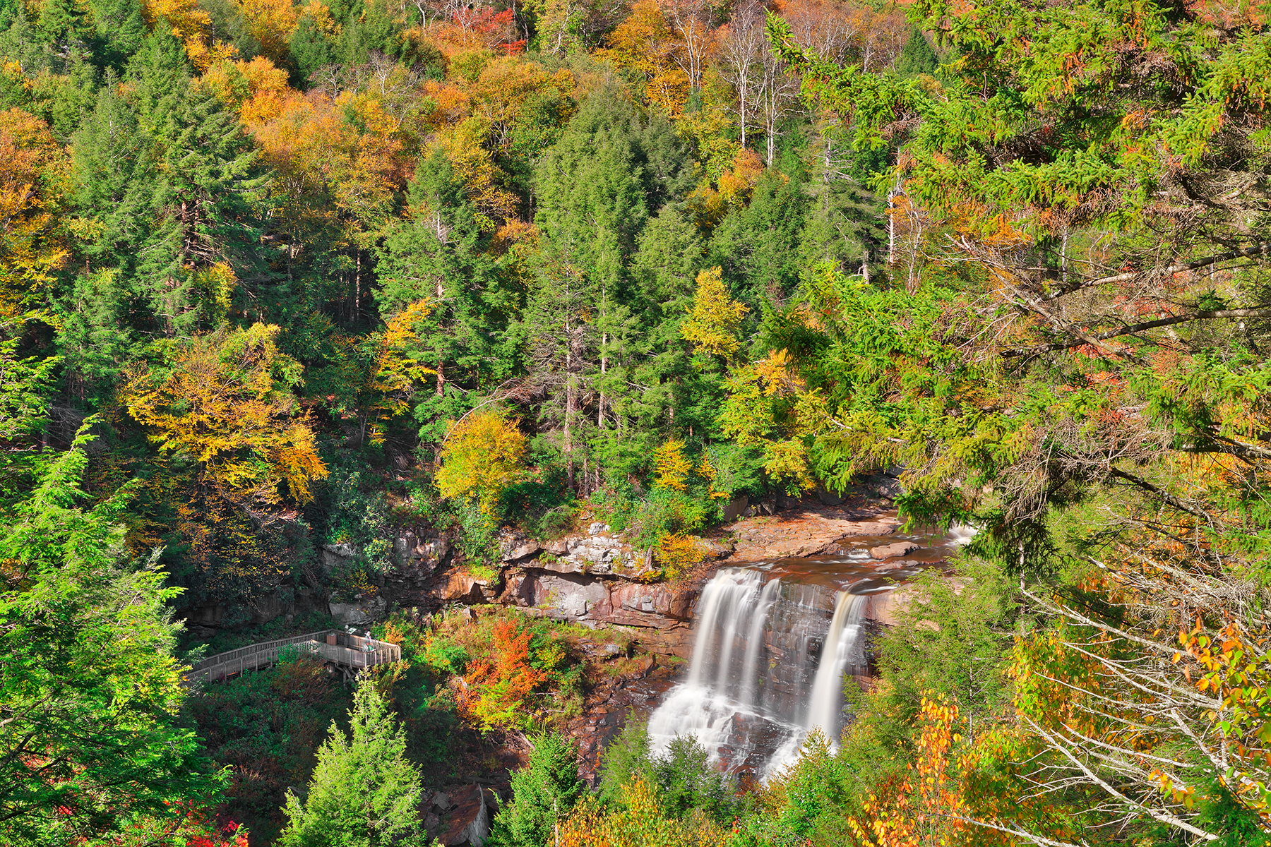 Autumn blackwater falls overlook - hdr photo