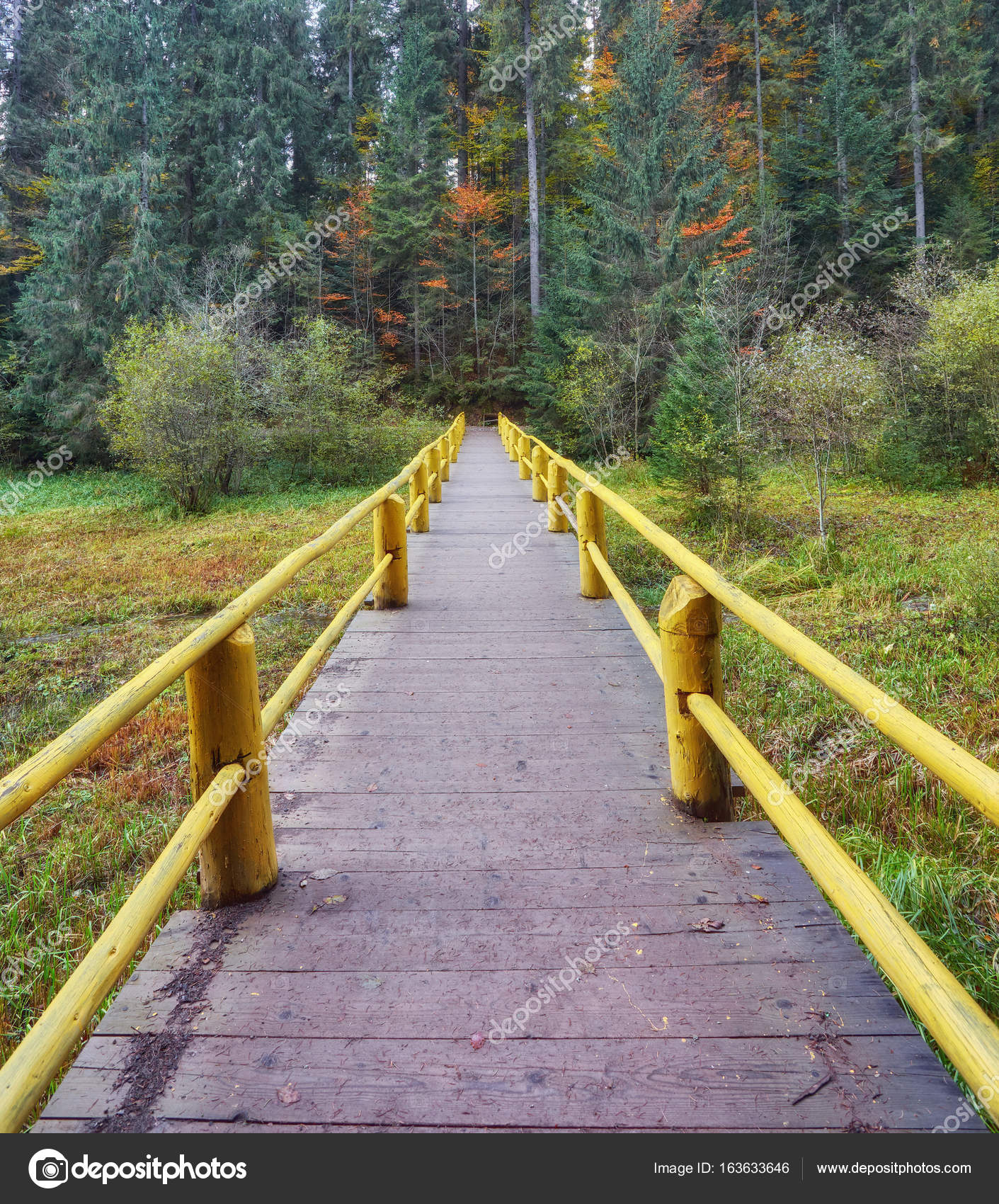 Wooden bridge over brook in autumn — Stock Photo © saharrr #163633646