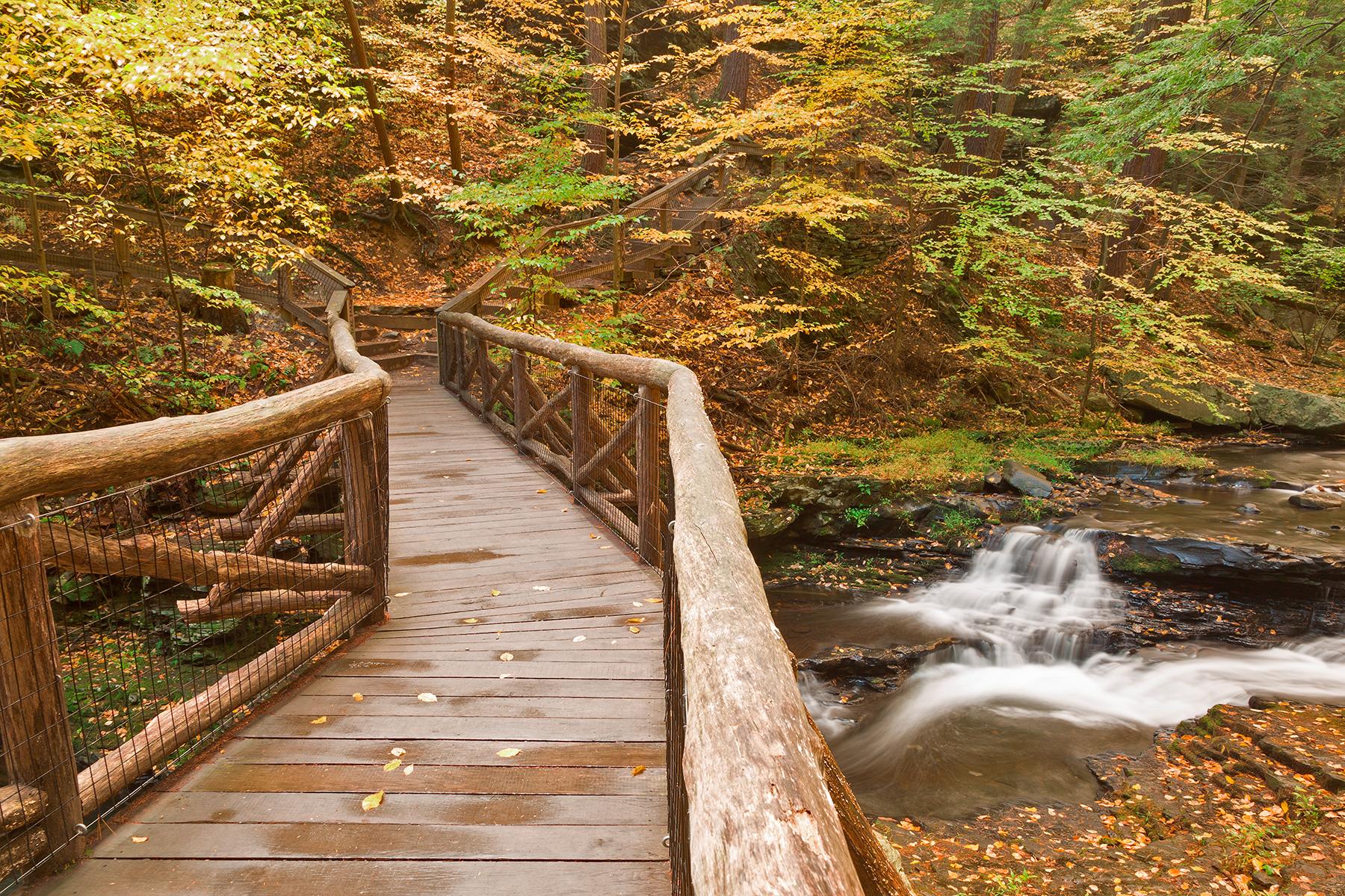 Autumn Boardwalk Bridge, Adventure, Recreational, Stairway, Stairs, HQ Photo