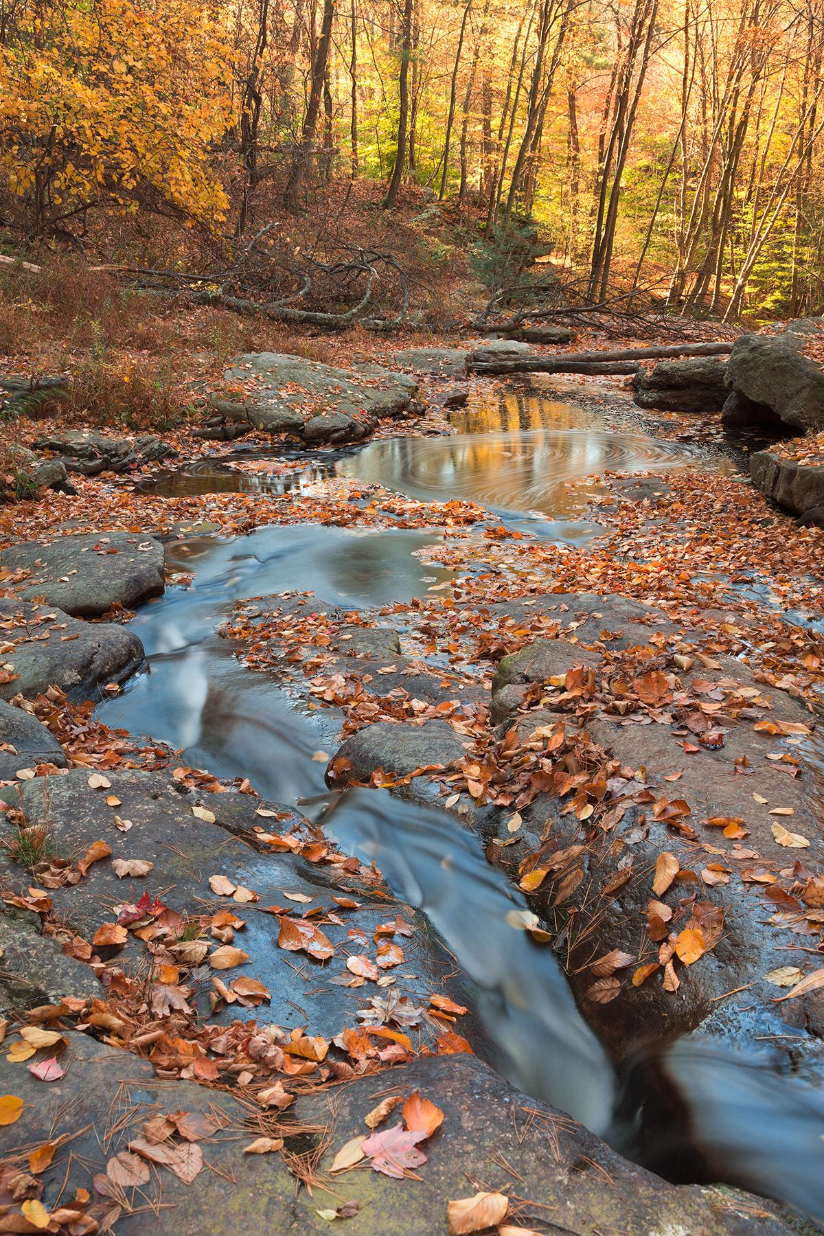 Autumn Boomerang Stream, America, Scenery, State, Spins, HQ Photo