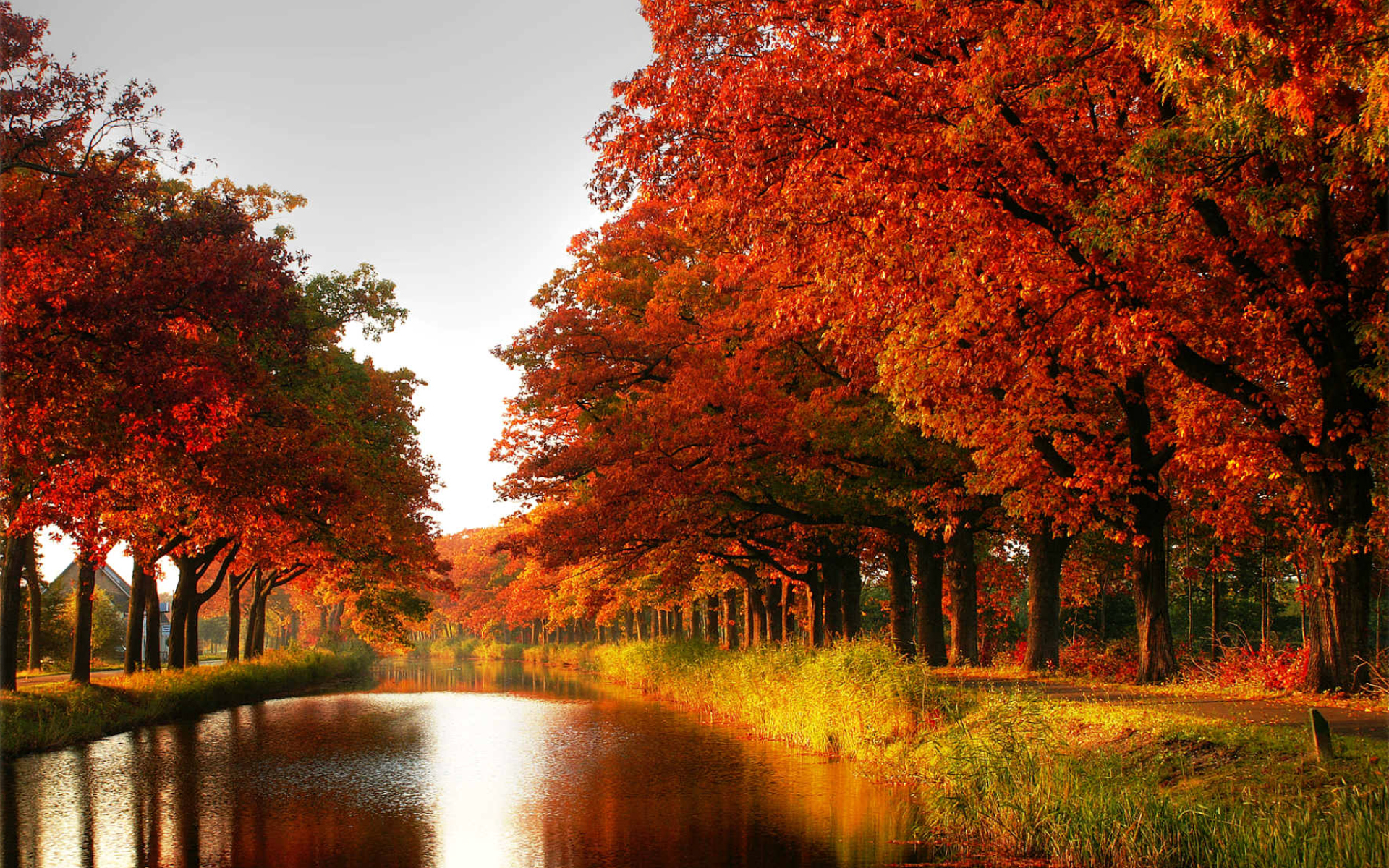 AUTUMN COLORS | AUTUMN | Pinterest | Bright colours, Autumn and ...