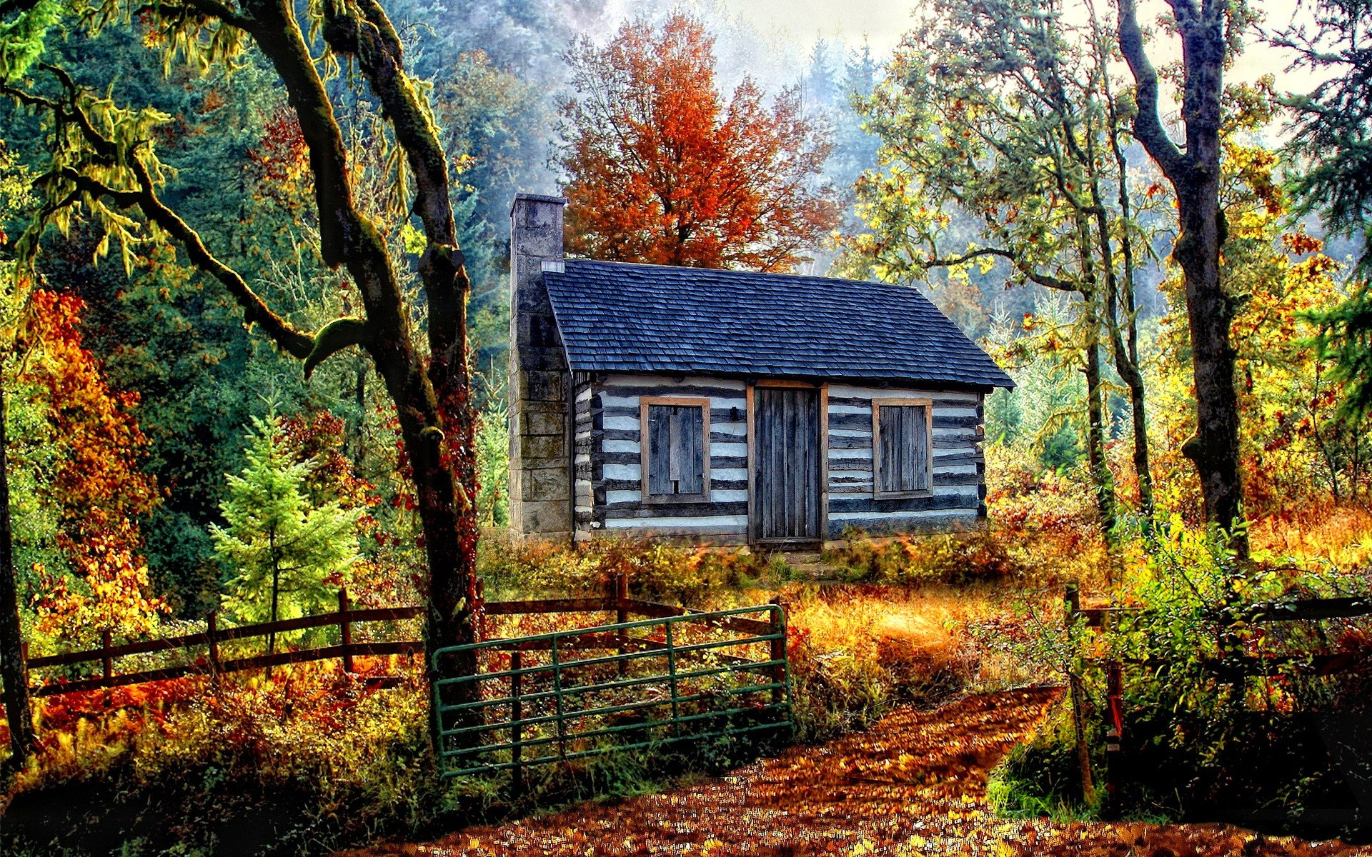 Forests: Foliage Autumn Cottage Fall Cabin Colorful Path Nature ...