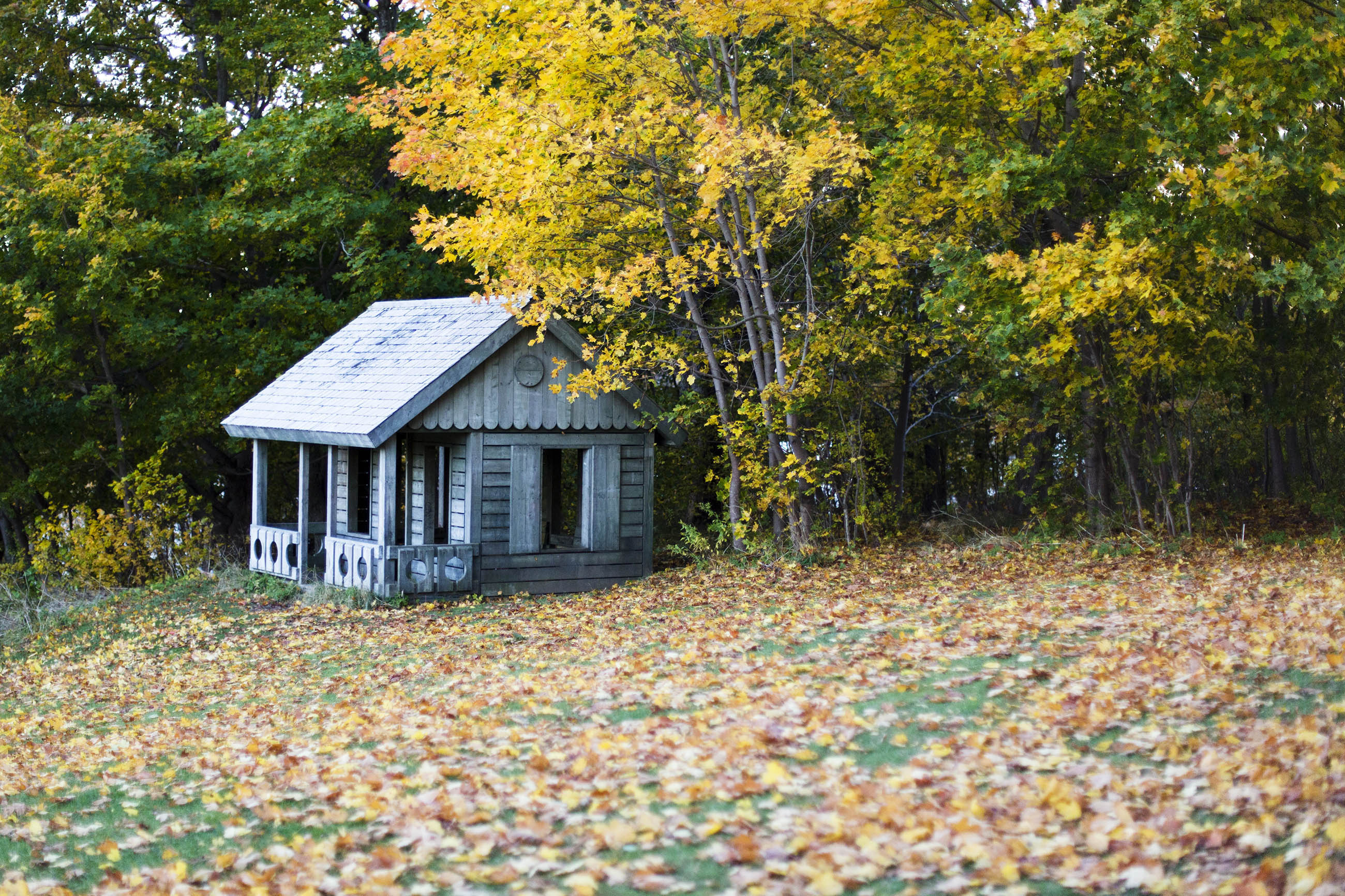 Autumn cottage, Season, Orange, Outside, Park, HQ Photo
