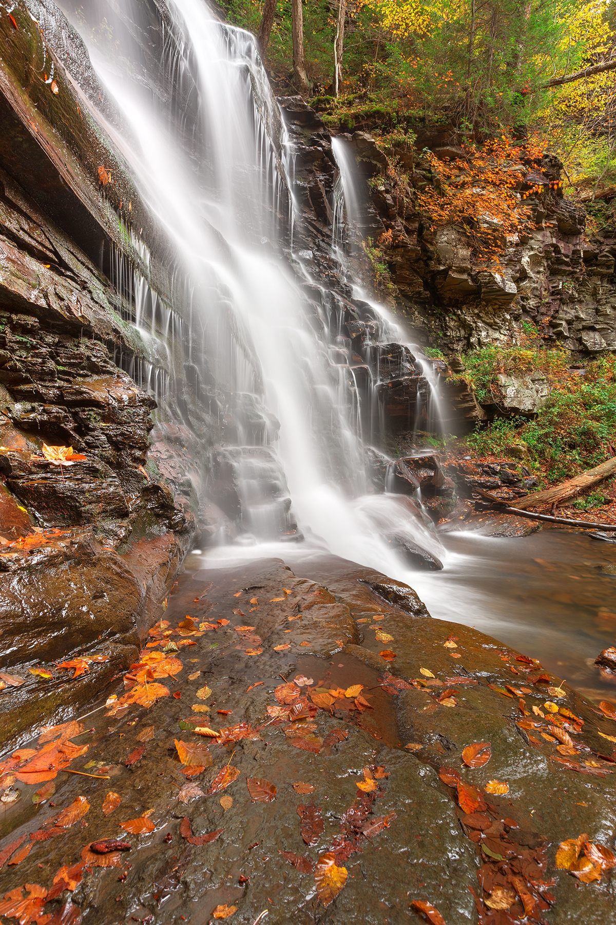 Autumn Ganoga Falls - HDR, America, Plants, Shade, Scenic, HQ Photo