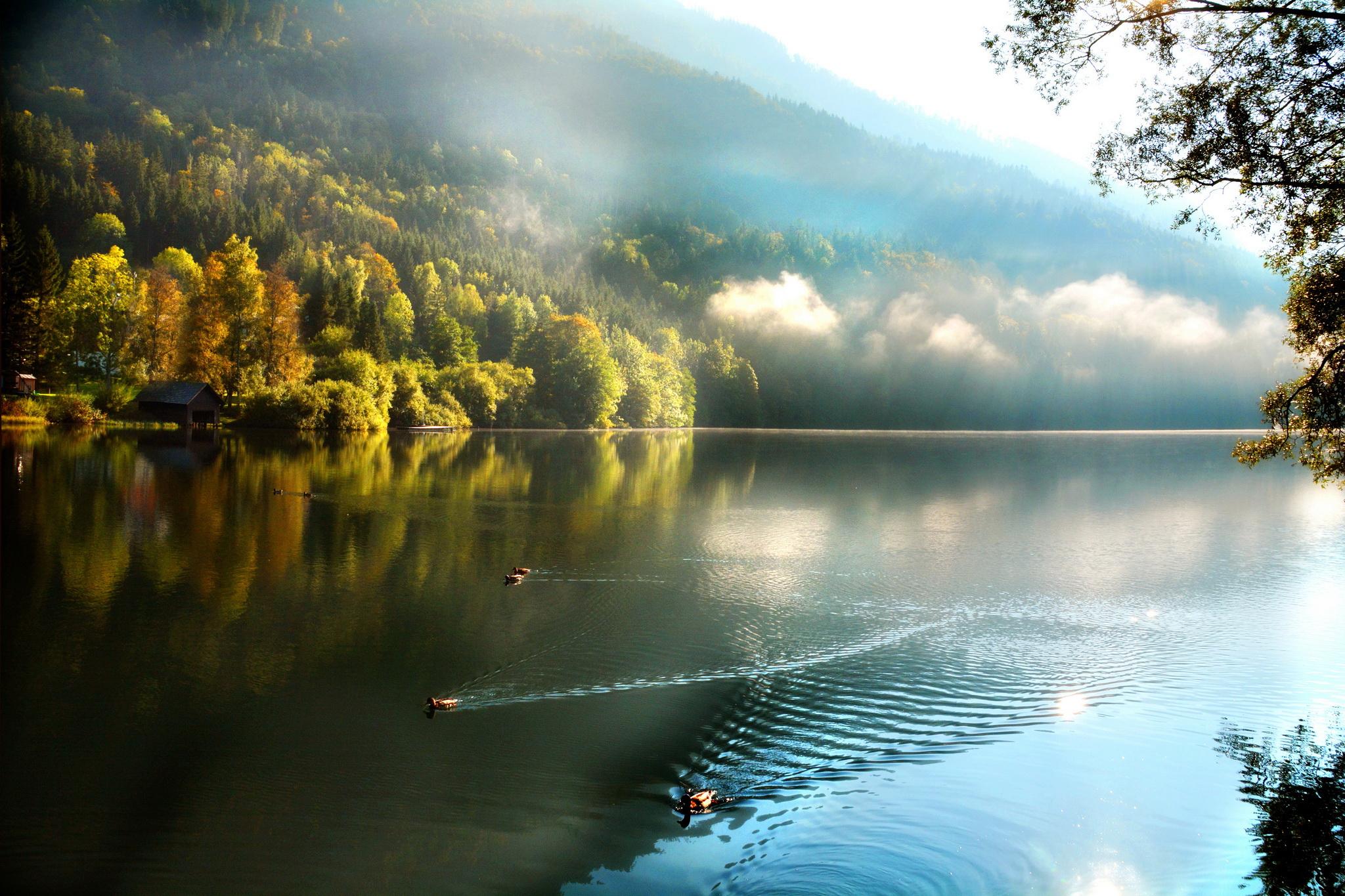 Ducks on the autumn lake / 2048 x 1365 / Nature / Photography ...