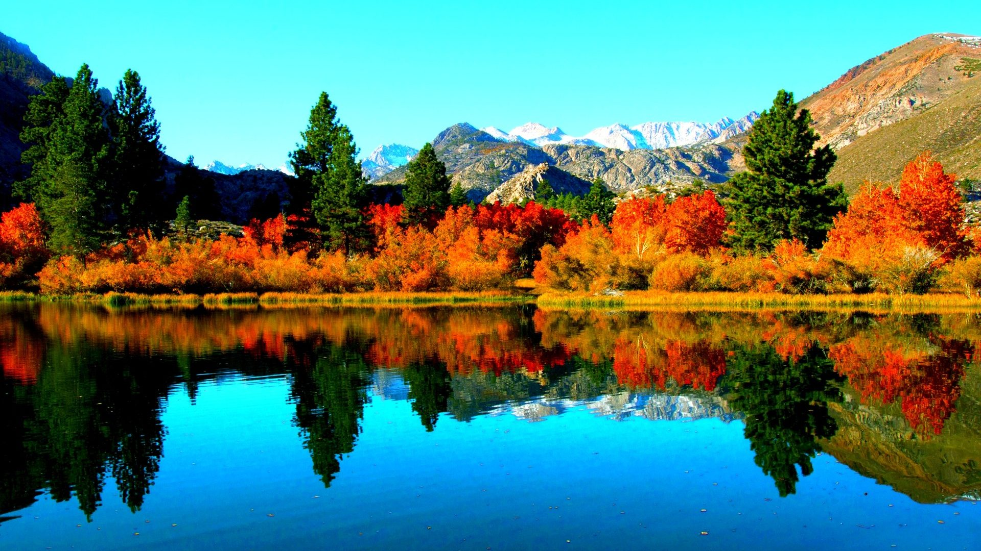 Lakes: AUTUMN LAKE Forest Reflection Mountain Wallpaper Hd for HD 16 ...