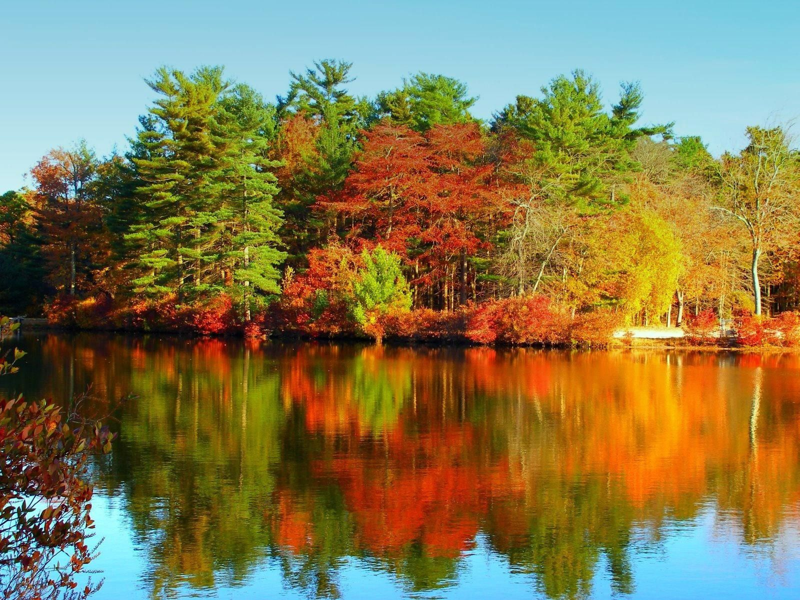 autumn lake | Autumn Lake | 1600 x 1200 | Download | Close | autumn ...