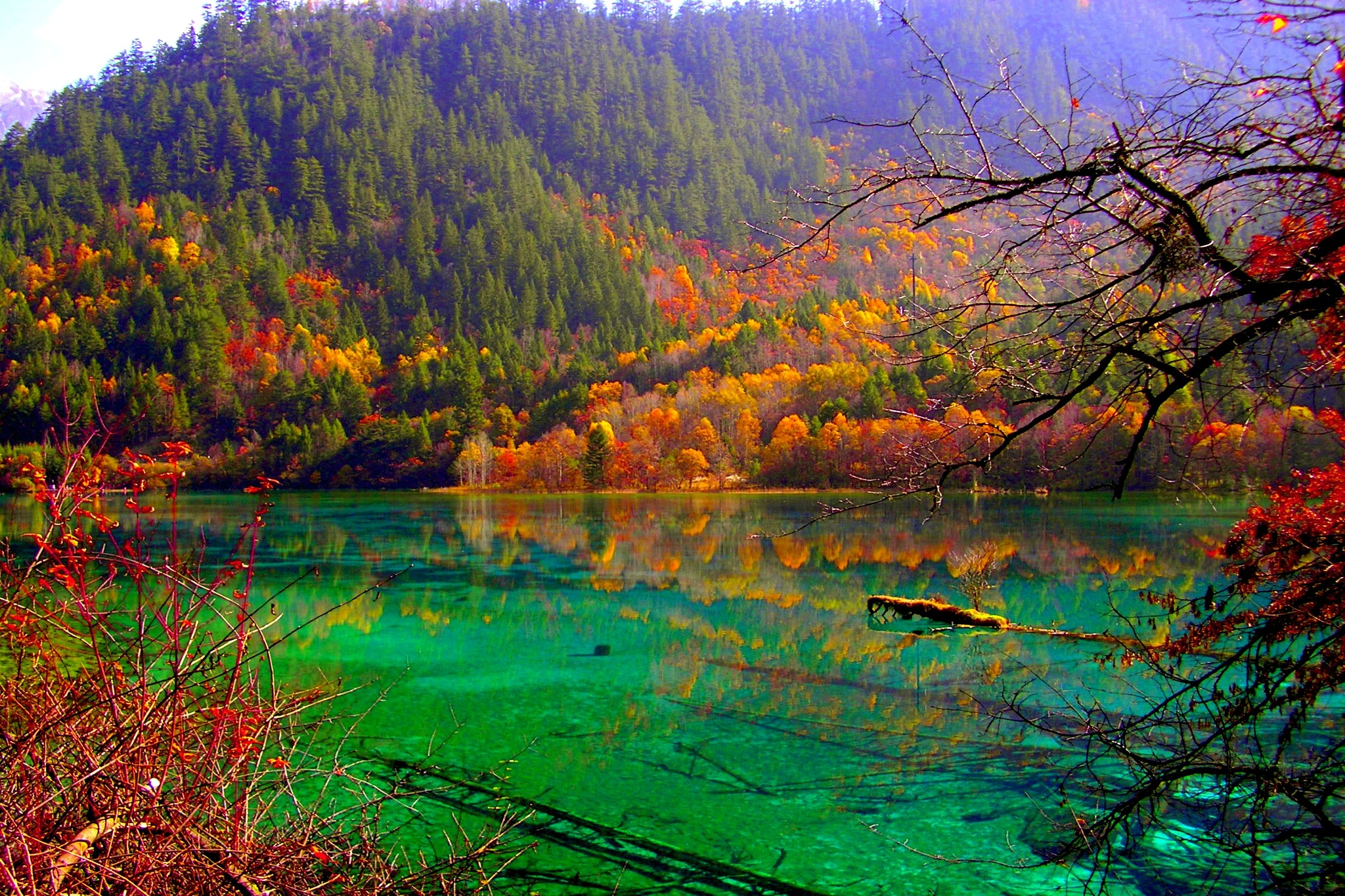 Lakes: AUTUMN LAKE Forest Fog Mountains Italy Image for HD 16:9 High ...