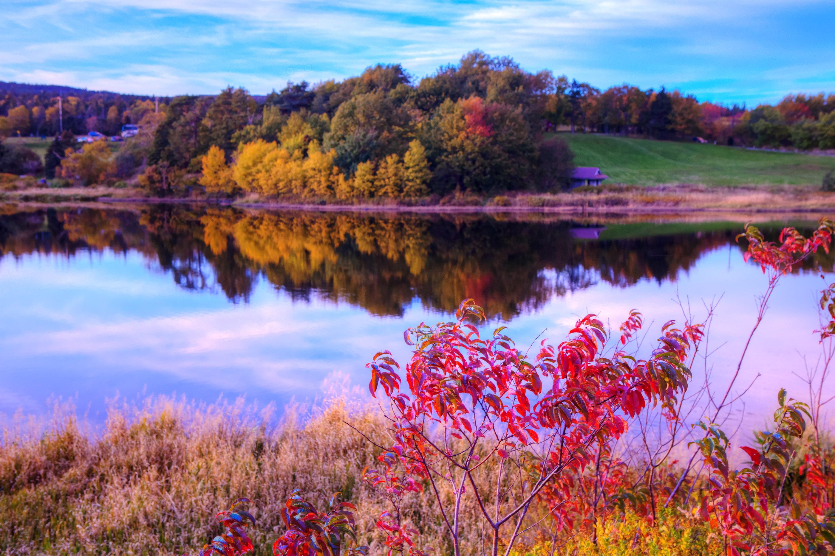 Autumn Lake, Reflection, Outdoors, Outside, Pink, HQ Photo
