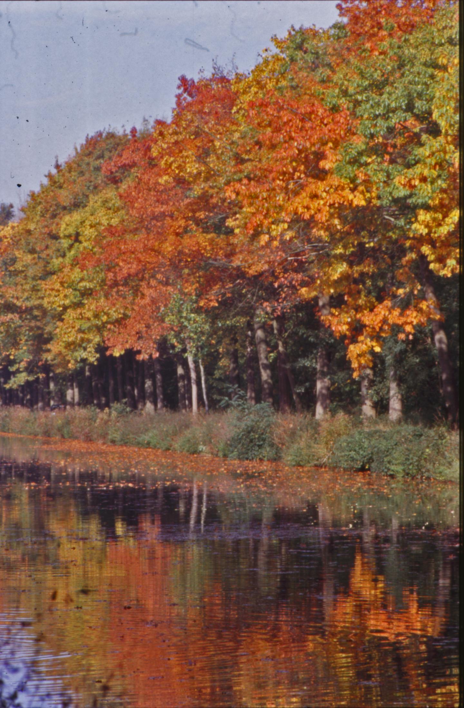 Autumn Landscape, Autumn, Lake, Landscape, Leaves, HQ Photo