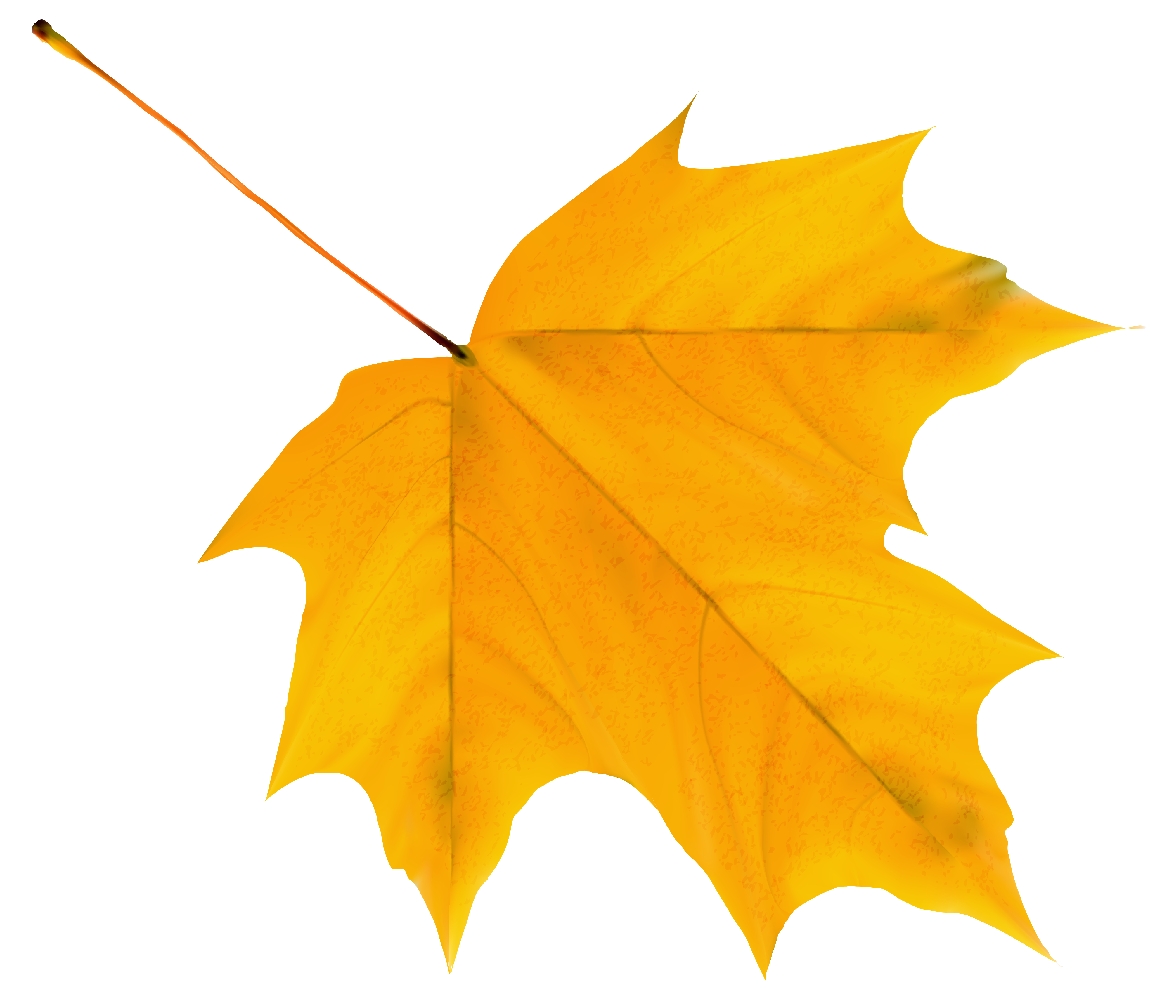 Yellow Autumn Leaf PNG Clipart Image | Gallery Yopriceville - High ...