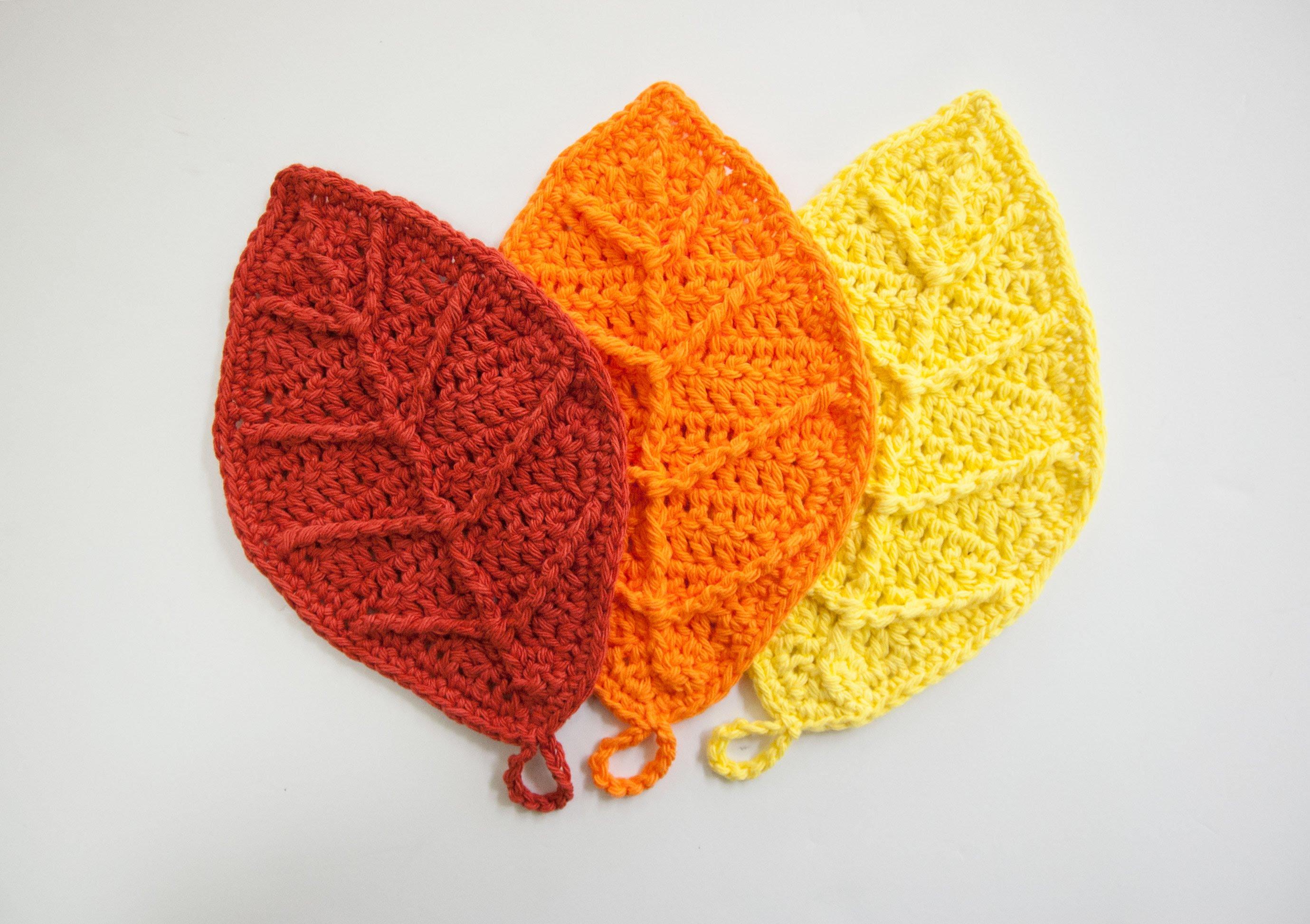 Autumn leaf photo