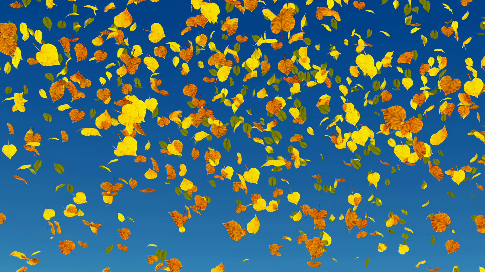 Falling autumn leaves in slow-motion on blue sky background. Fall ...