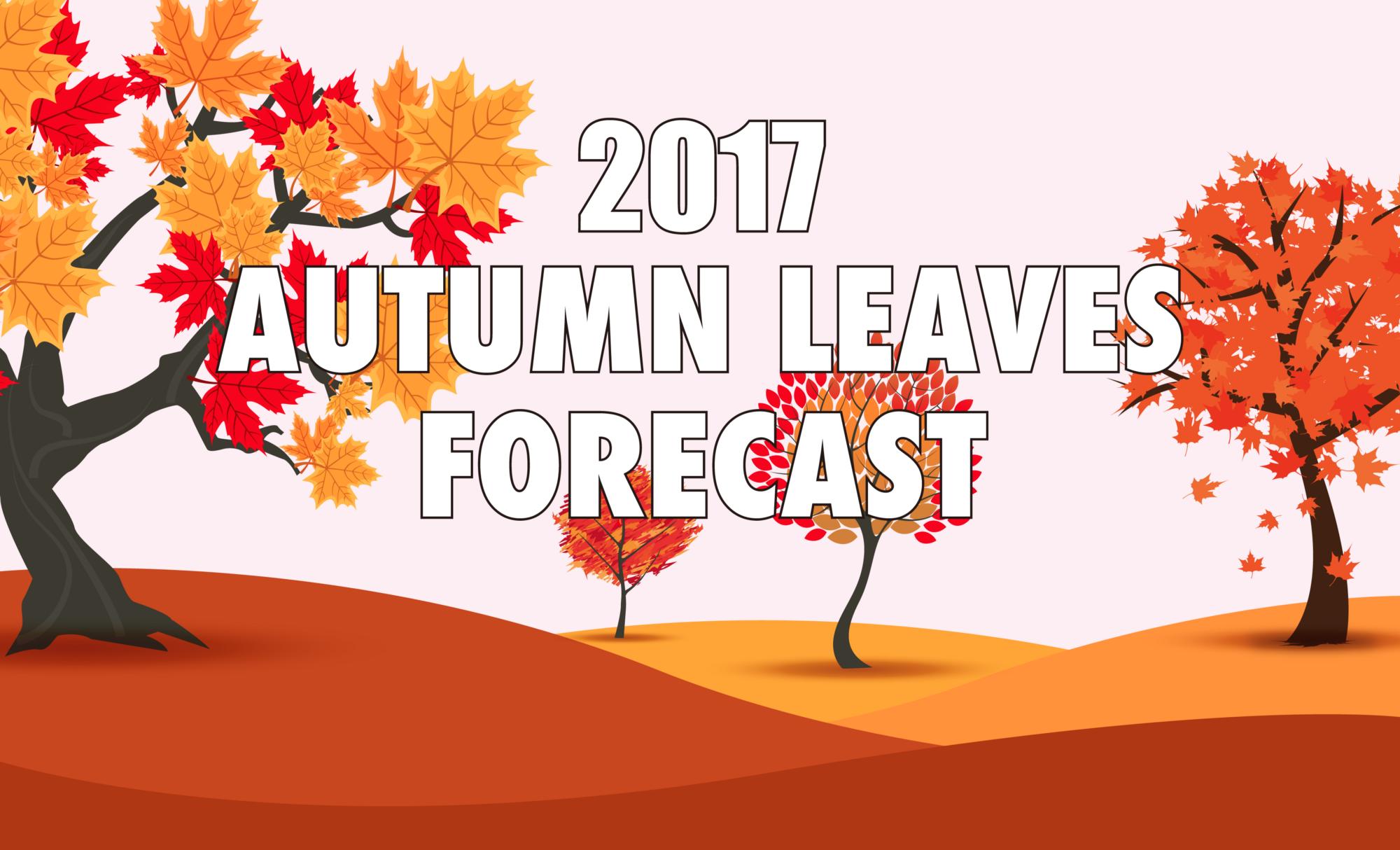 2017 Autumn Leaves Forecast in Japan – JW Web Magazine