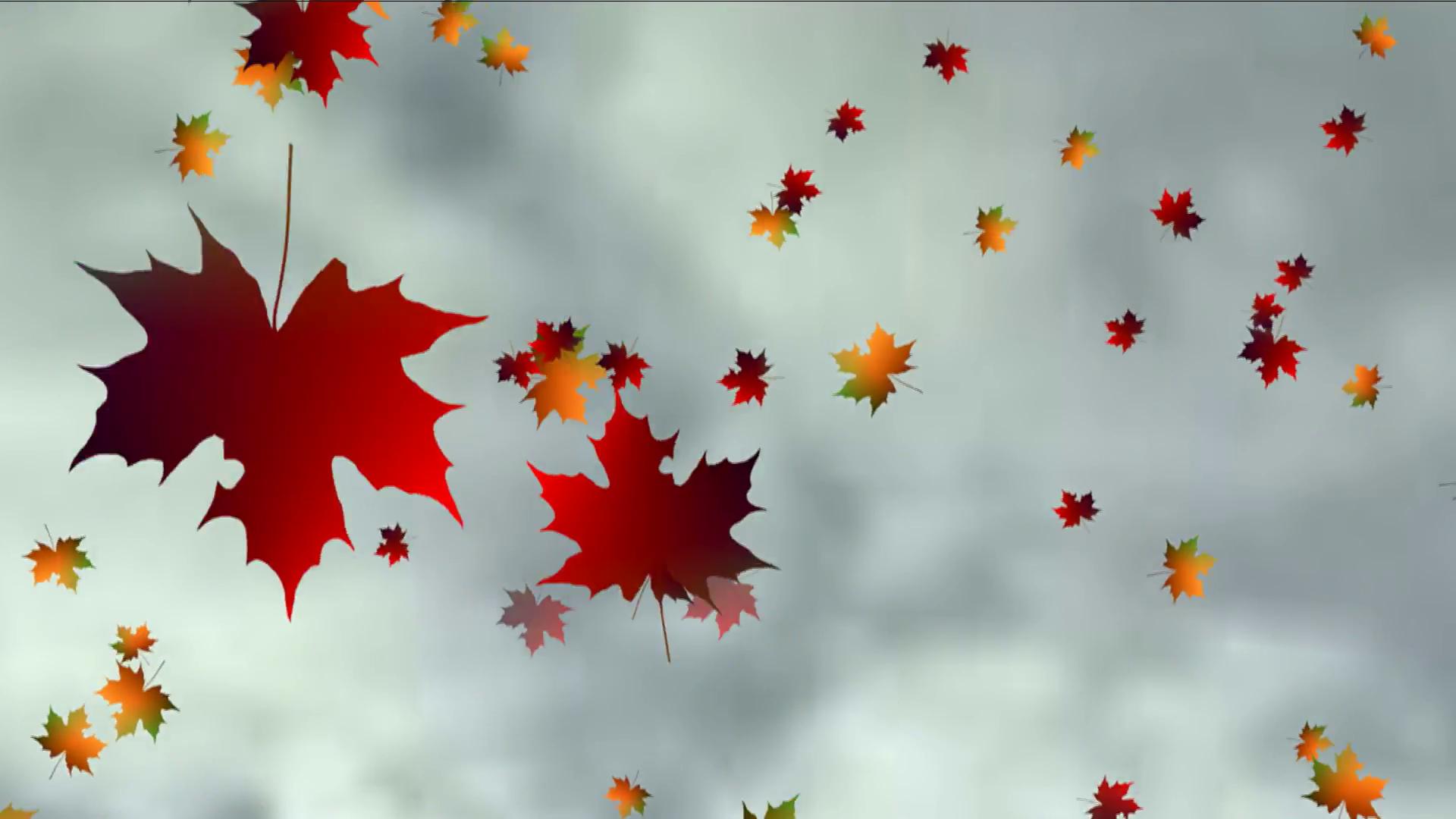 Animated Autumn Leaves Falling Motion Background - Videoblocks