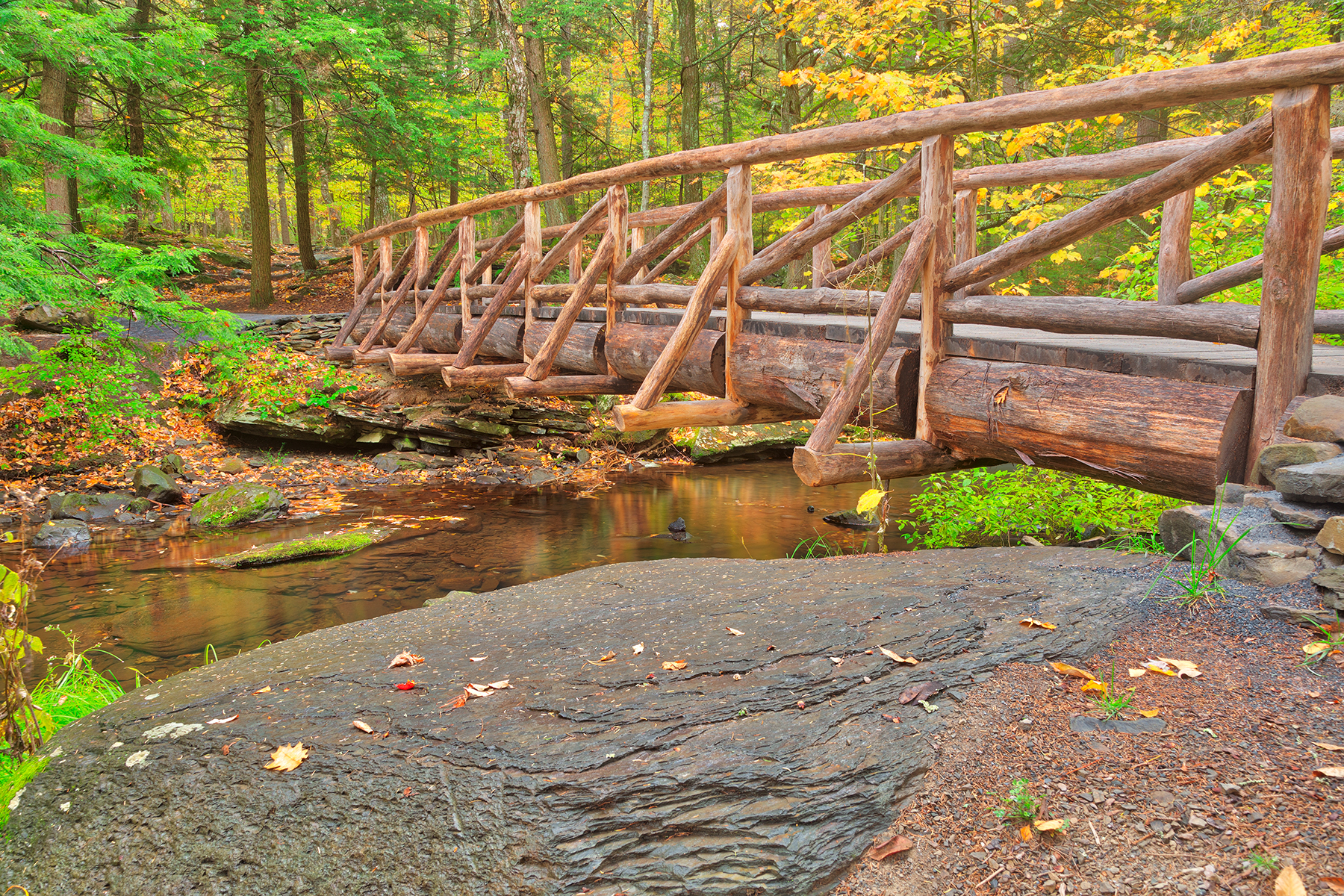 Autumn Log Bridge - HDR, Adventure, Railings, Scenic, Scenery, HQ Photo