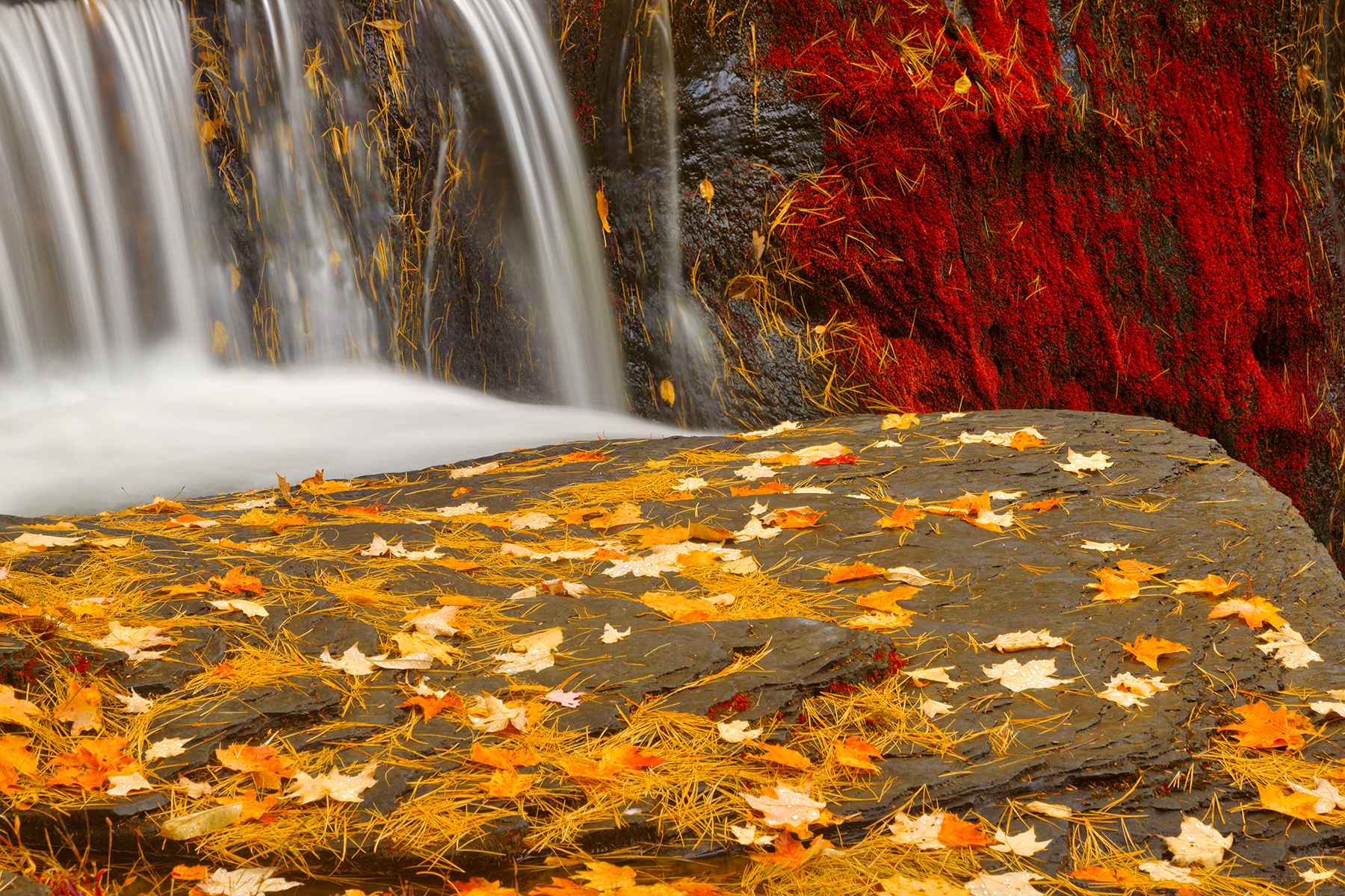 Autumn moss factory falls - gold ruby fantasy hdr photo
