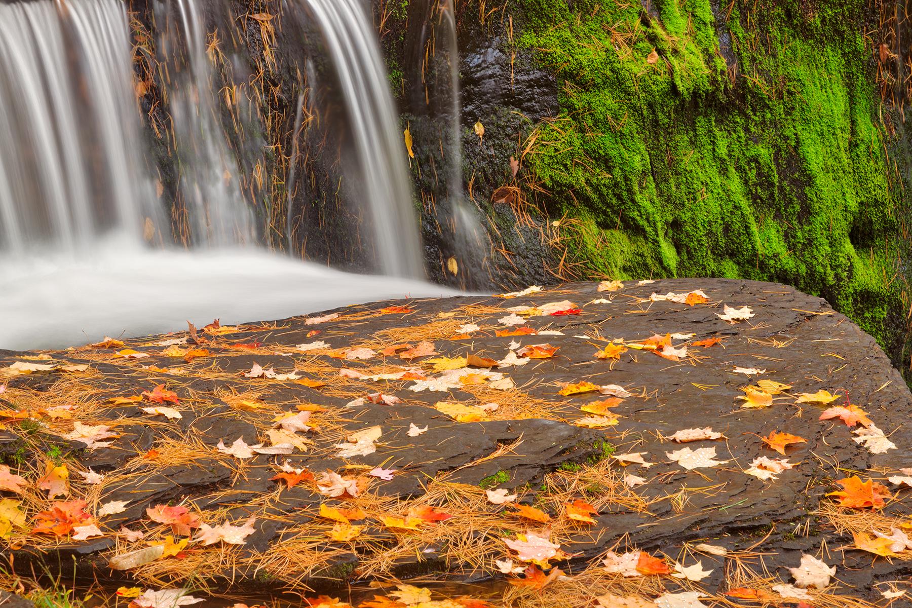 Autumn moss factory falls - hdr photo