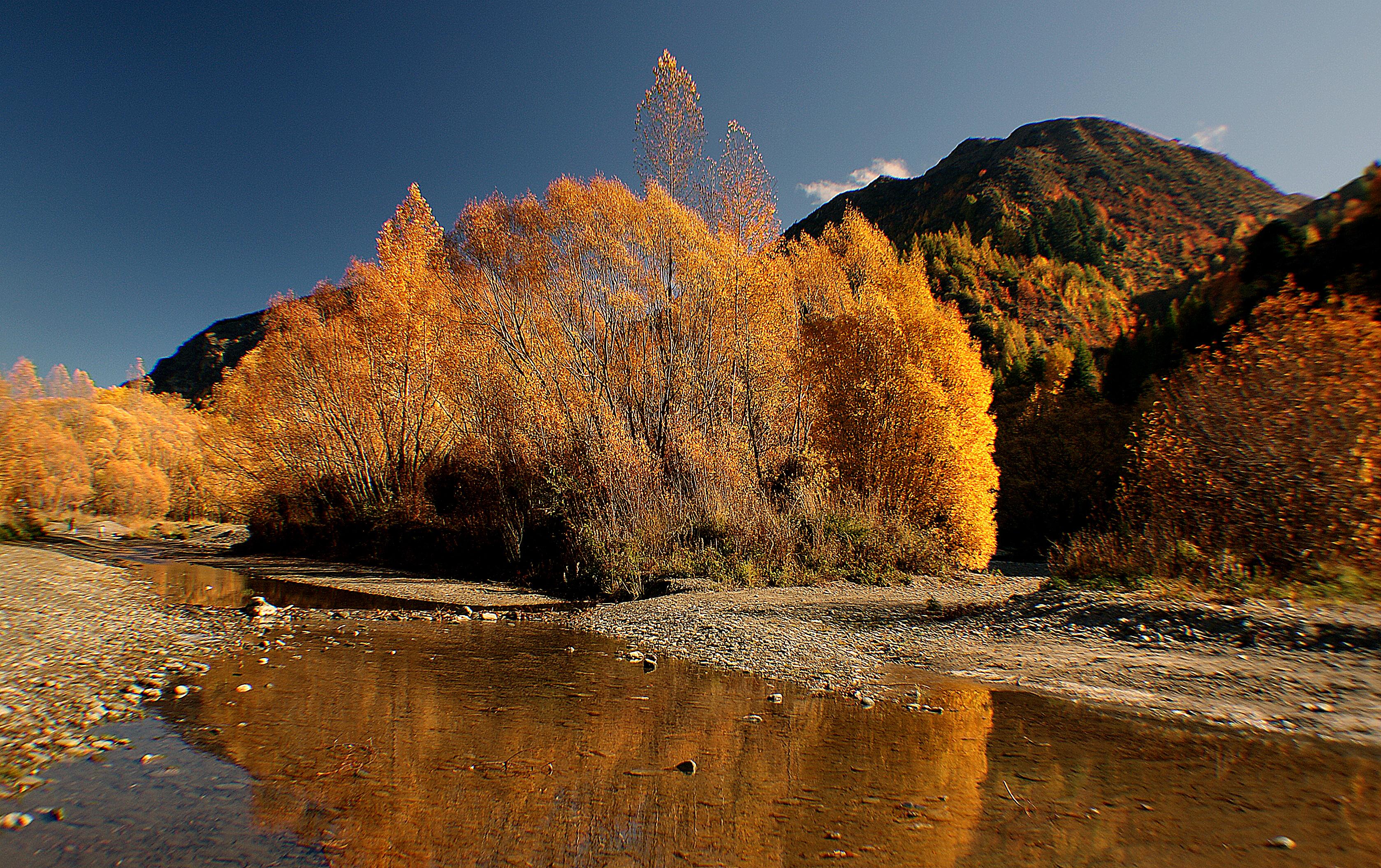 Autumn on the arrow river nz photo