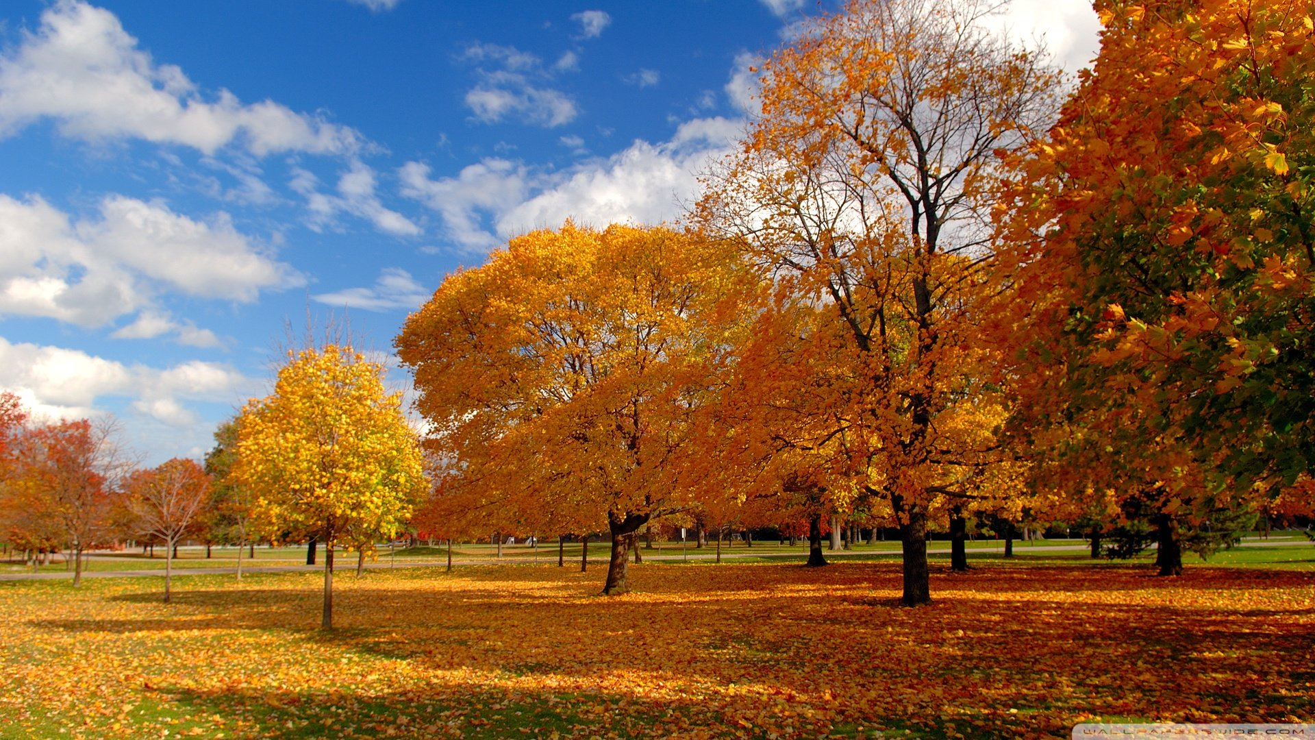 Autumn Park 757143 - WallDevil