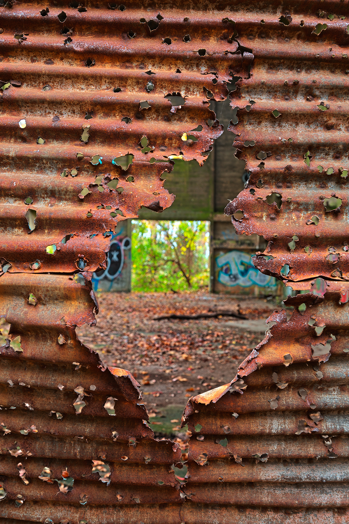 Autumn Power House Decay - HDR, Abandoned, Organic, Rolling, Retro, HQ Photo