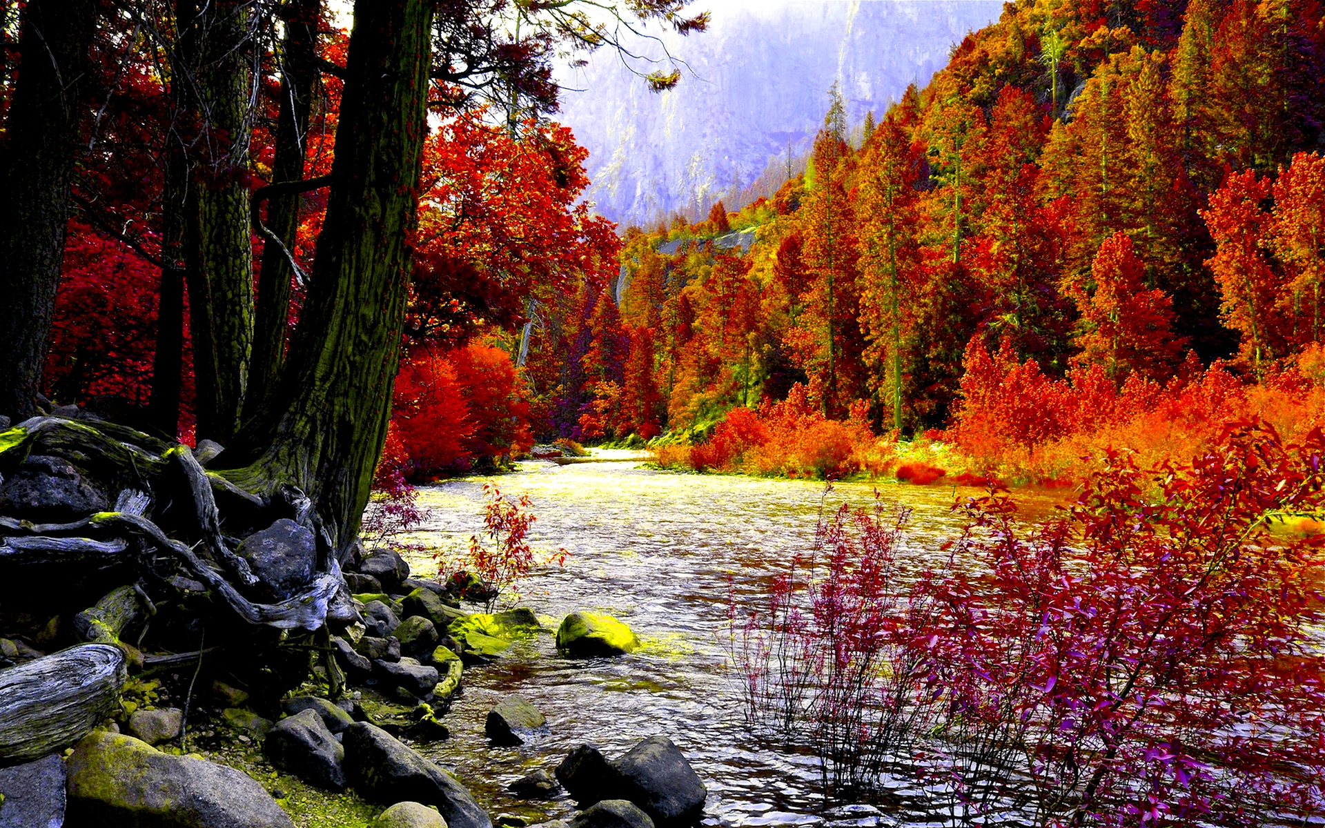 Autumn river photo