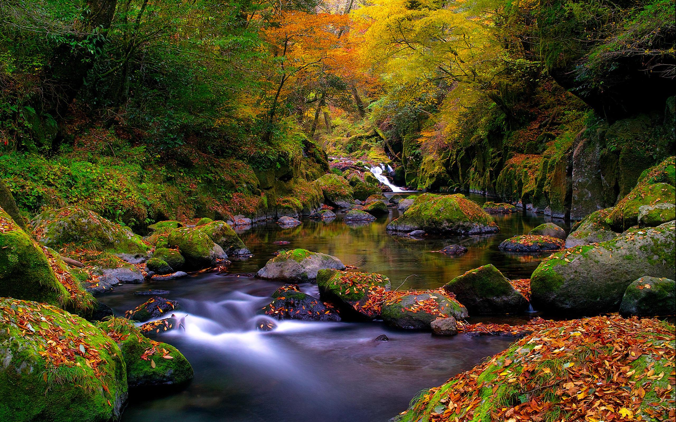 Autumn River #6918382