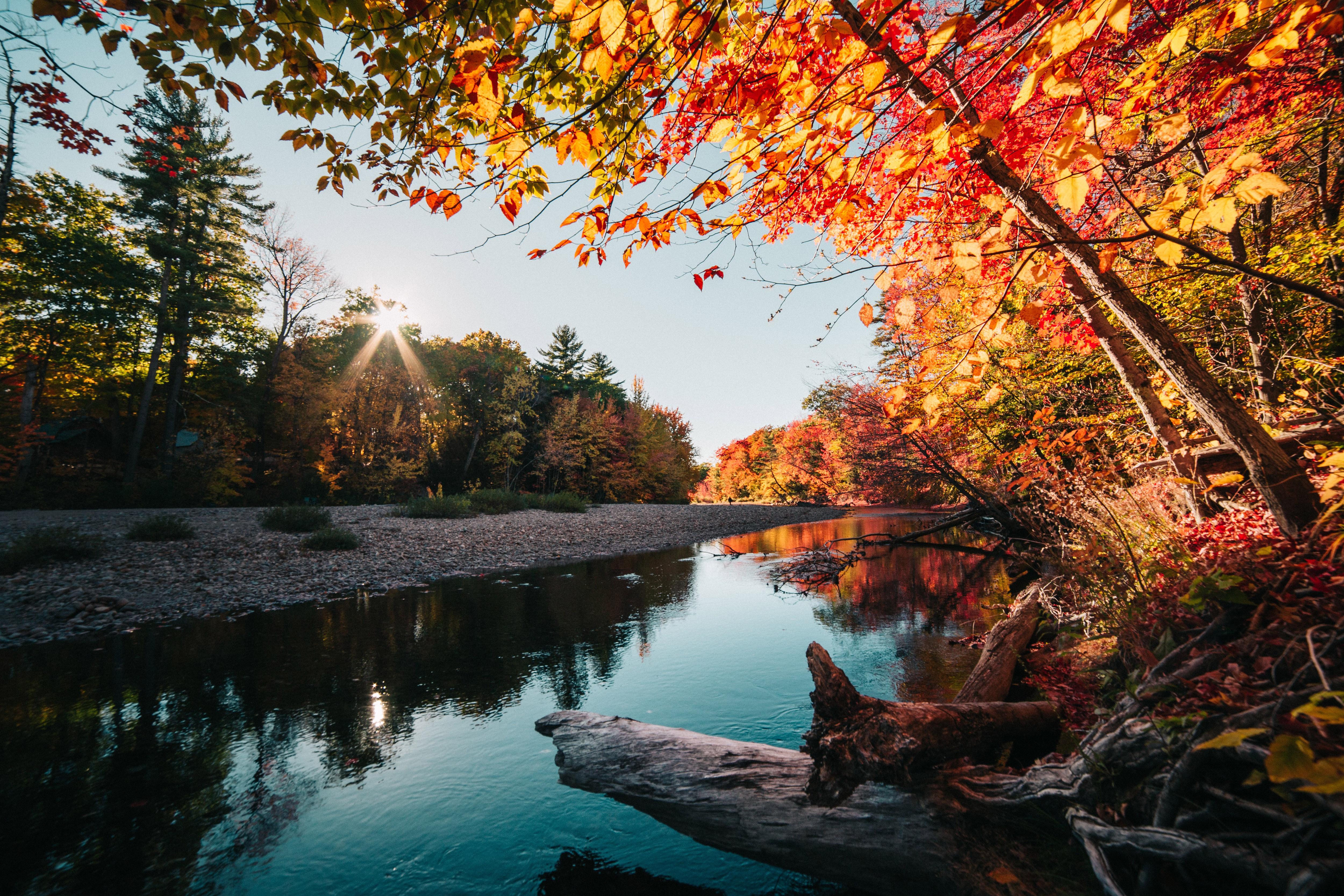 Calm River in the Autumn Free Photo - ISO Republic