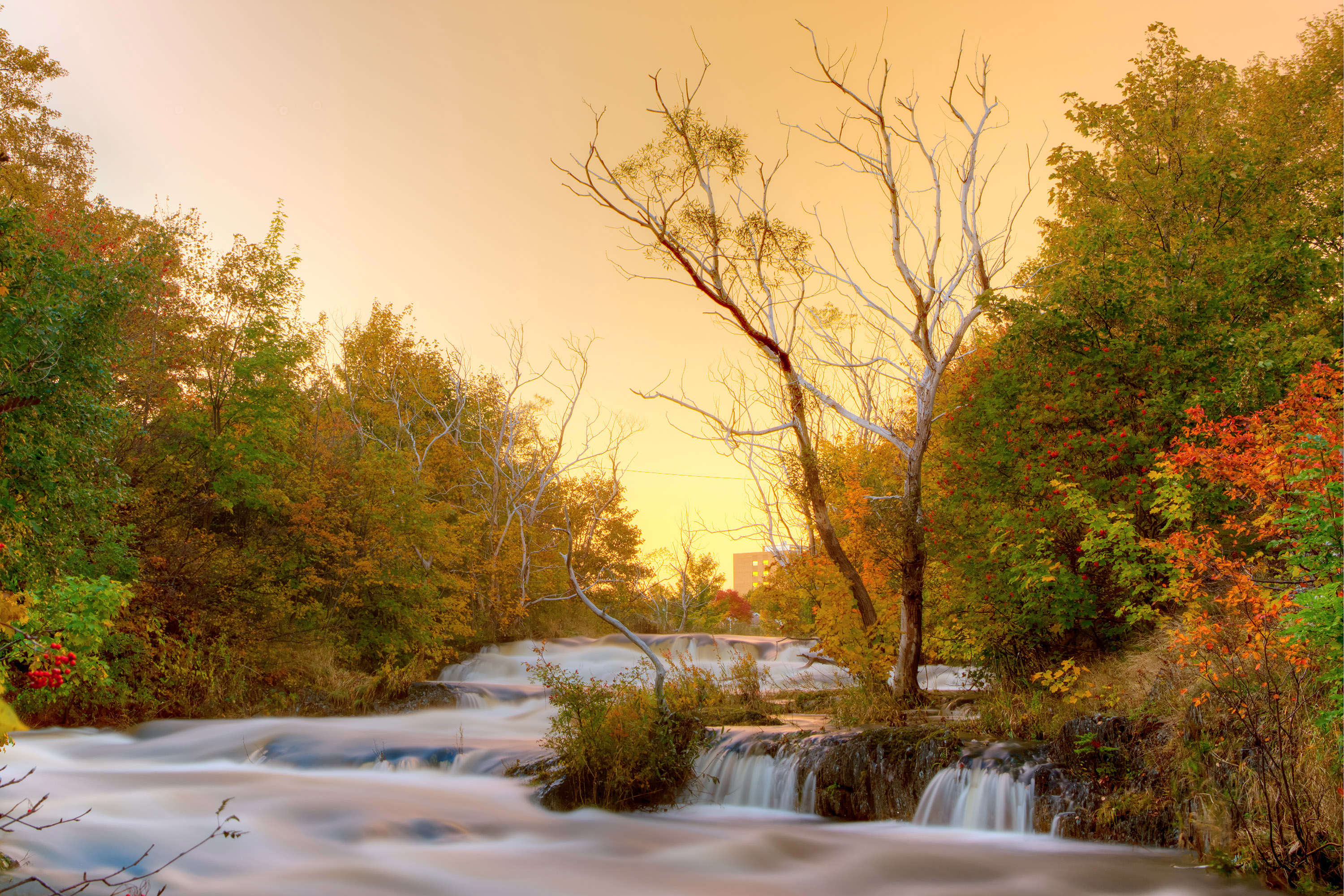 Autumn River, Autumn, Stone, River, Rock, HQ Photo