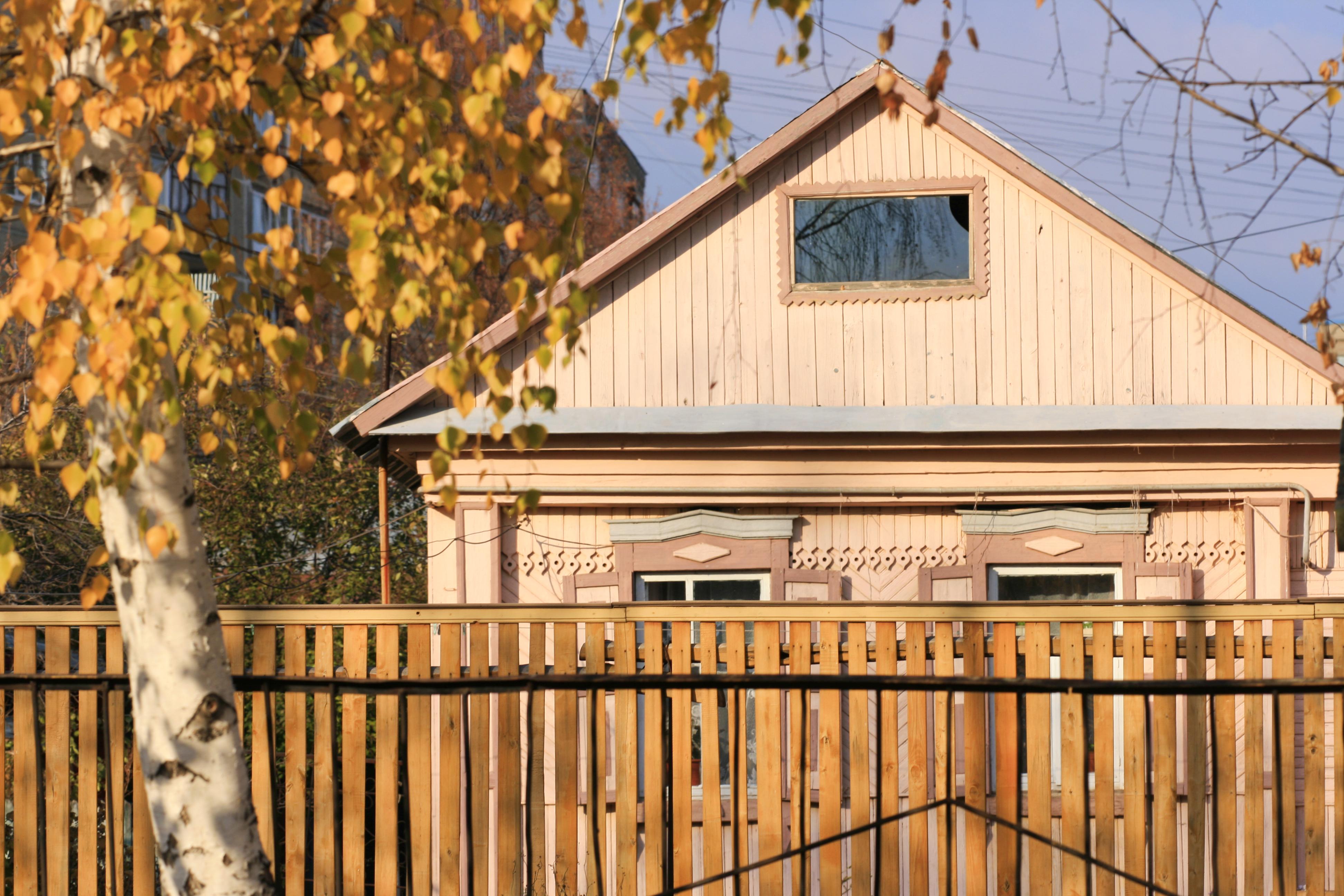 autumn scene, Autumn, Scene, Wood, Windows, HQ Photo