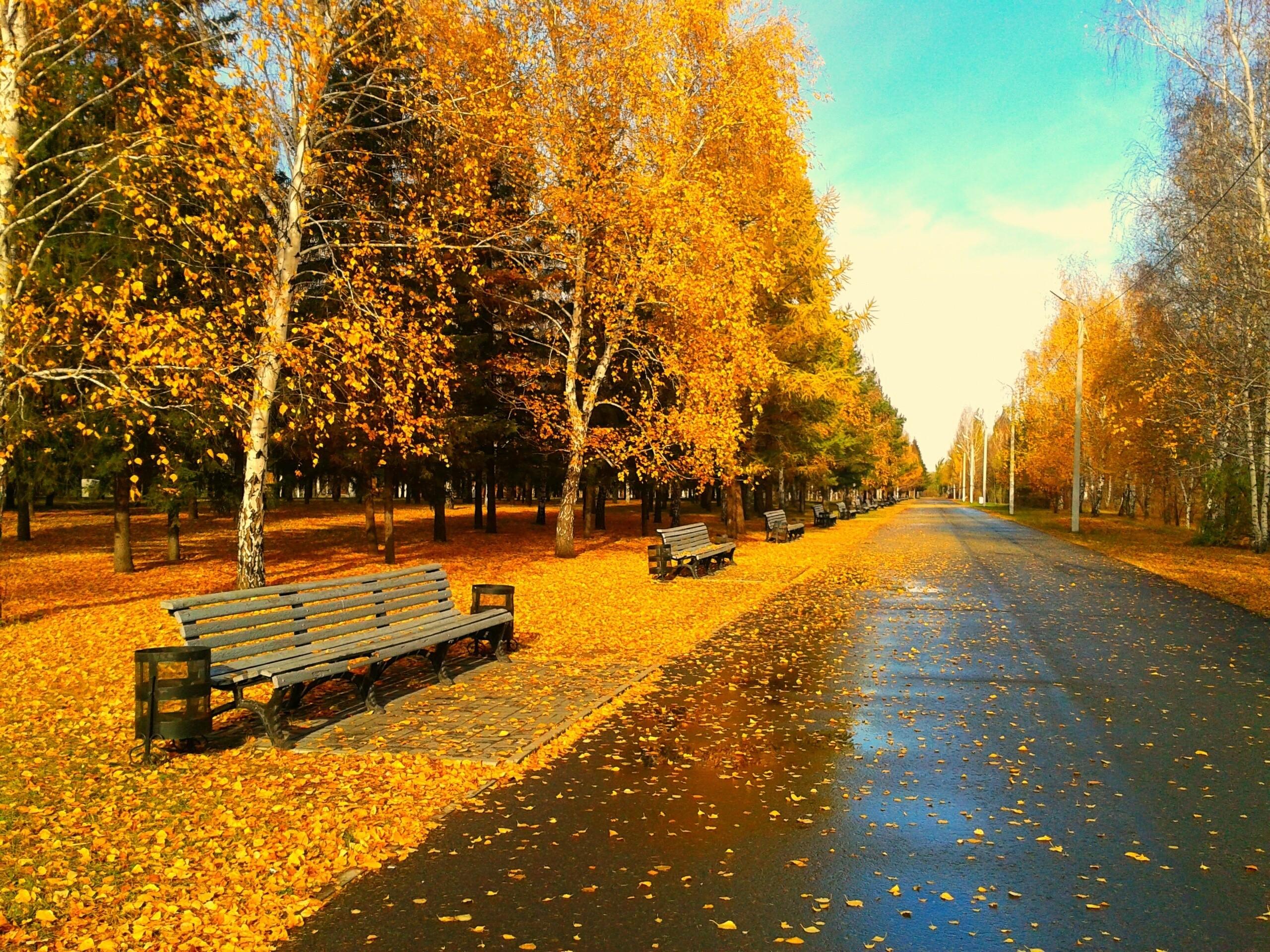 Autumn season wallpaper   AllWallpaper.in #15136   PC   en