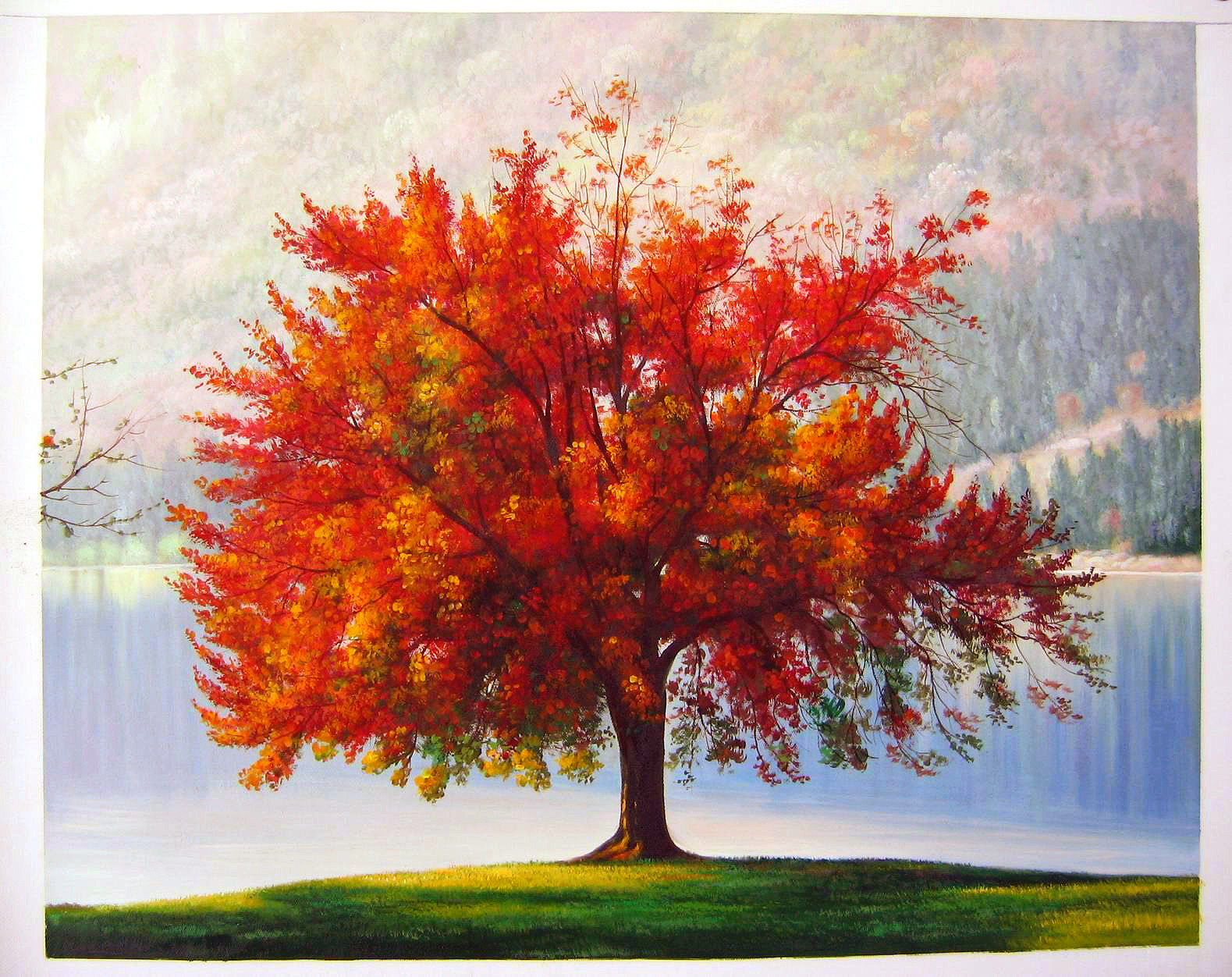 The Autumn Tree   ted-drakness   Foundmyself