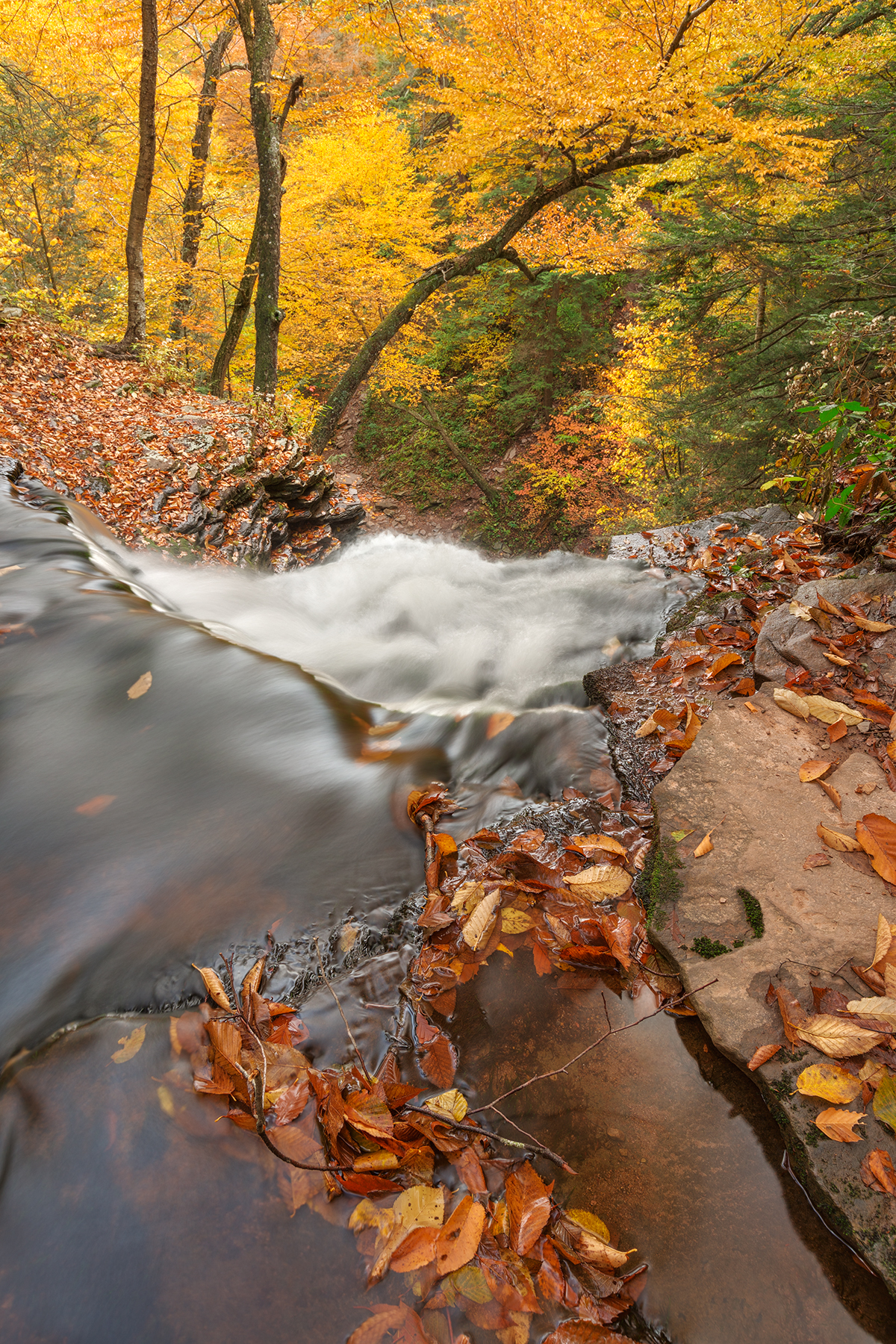 Autumn waterfall precipice - hdr photo