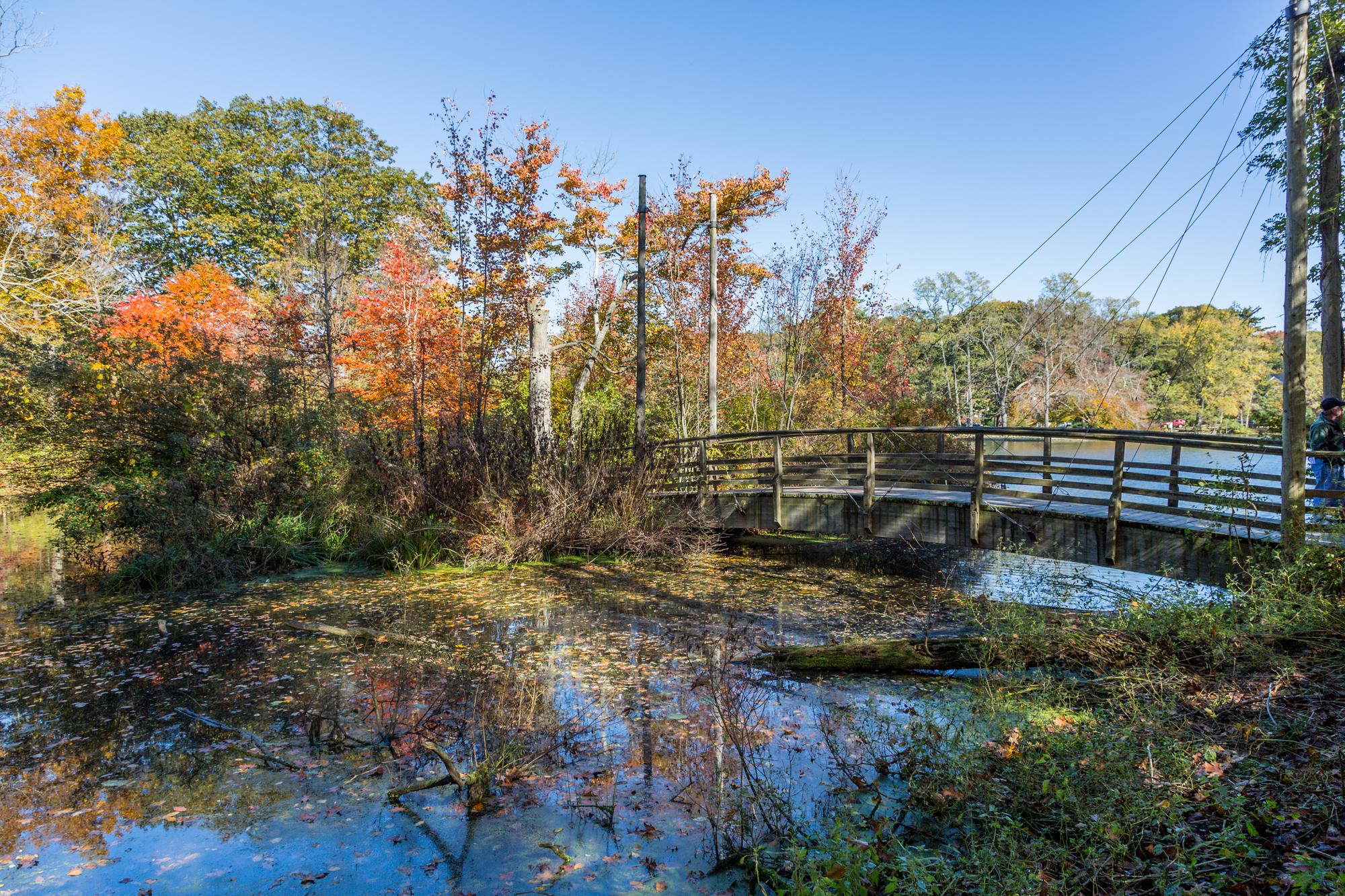 Long Island, Avalon Park, Stony Brook