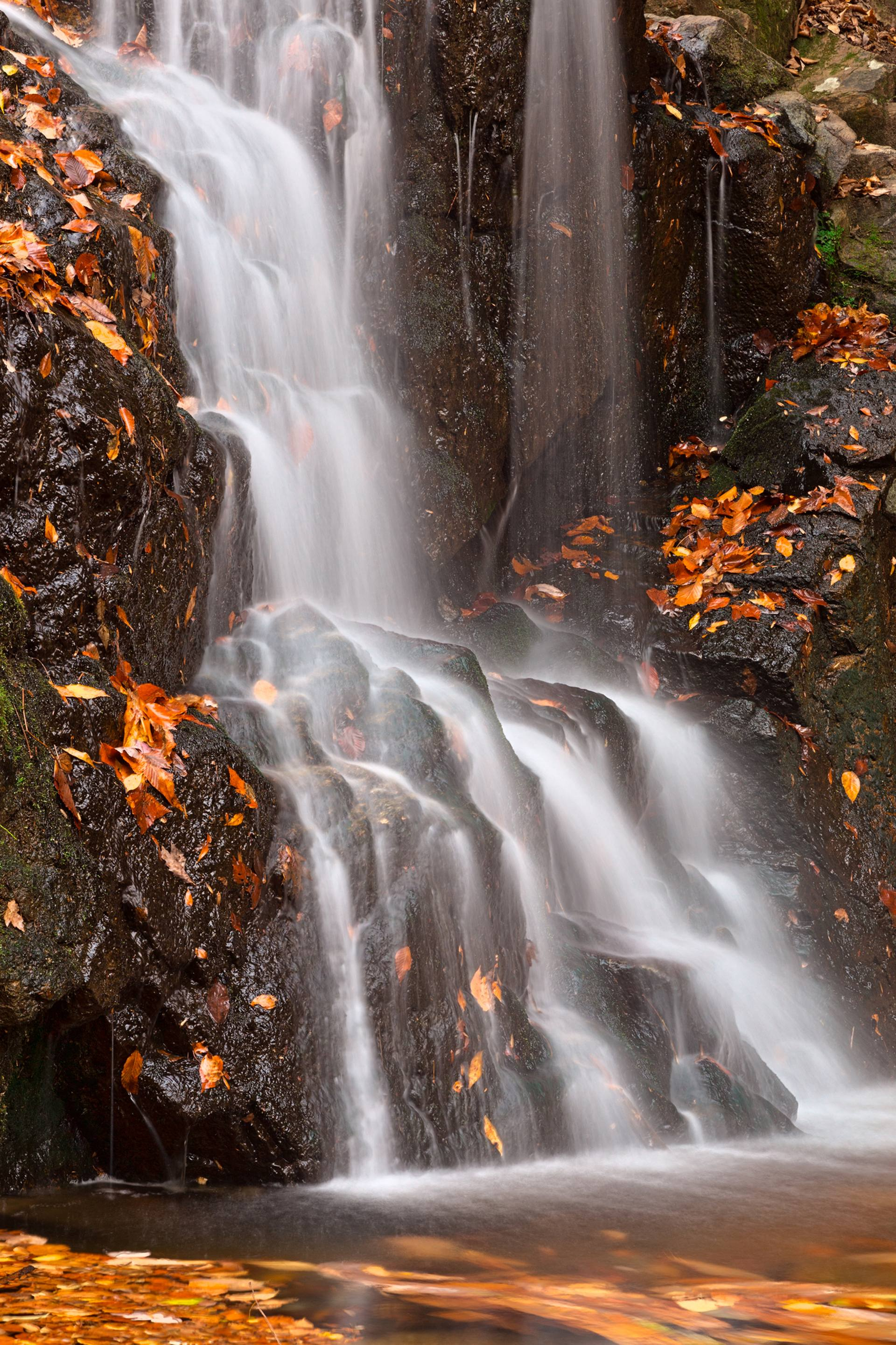 Saatchi Art: Avalon Falls - Limited Edition 1 of 7 Photography by ...