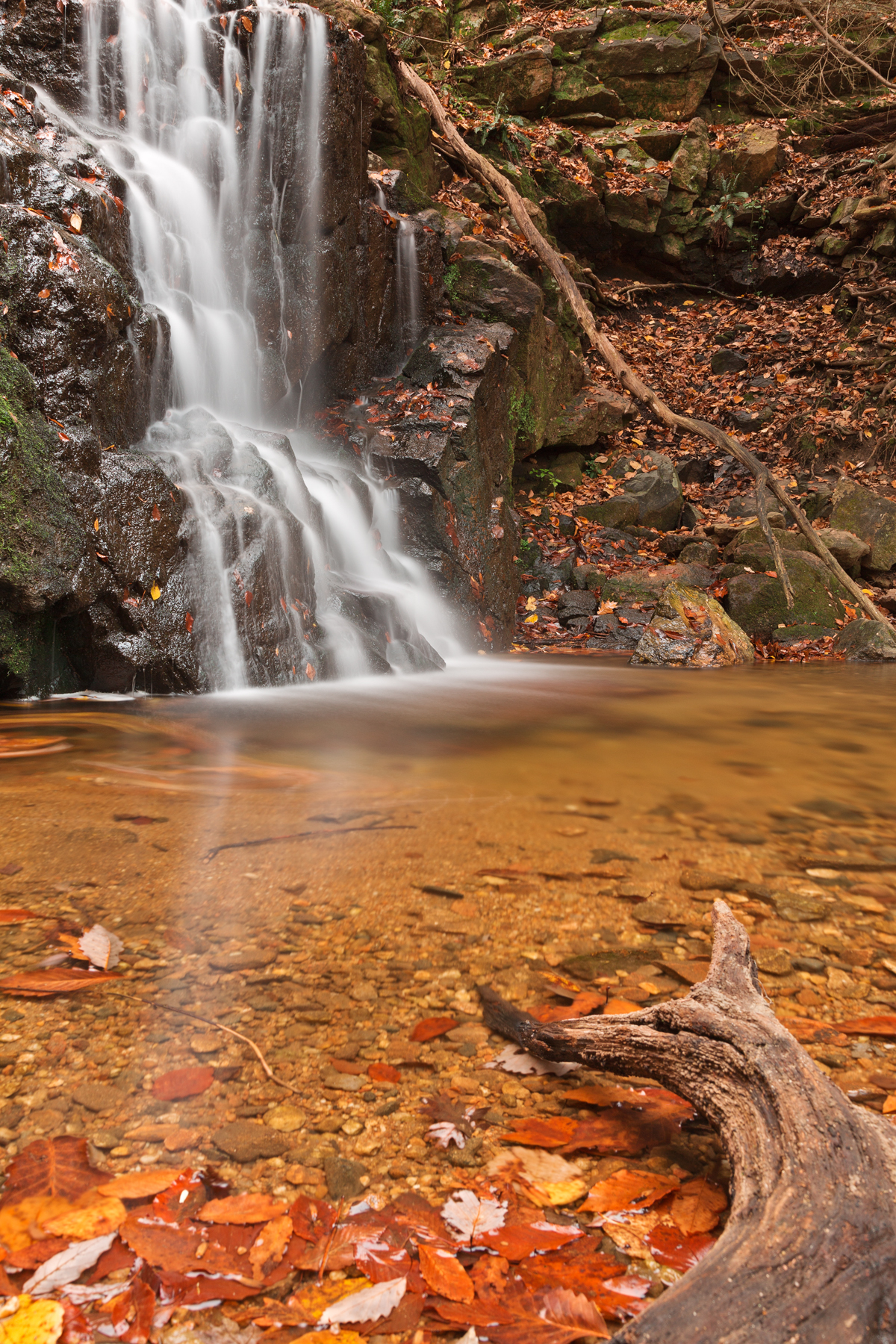 Avalon Hook Falls, America, Pool, Scenic, Scenery, HQ Photo