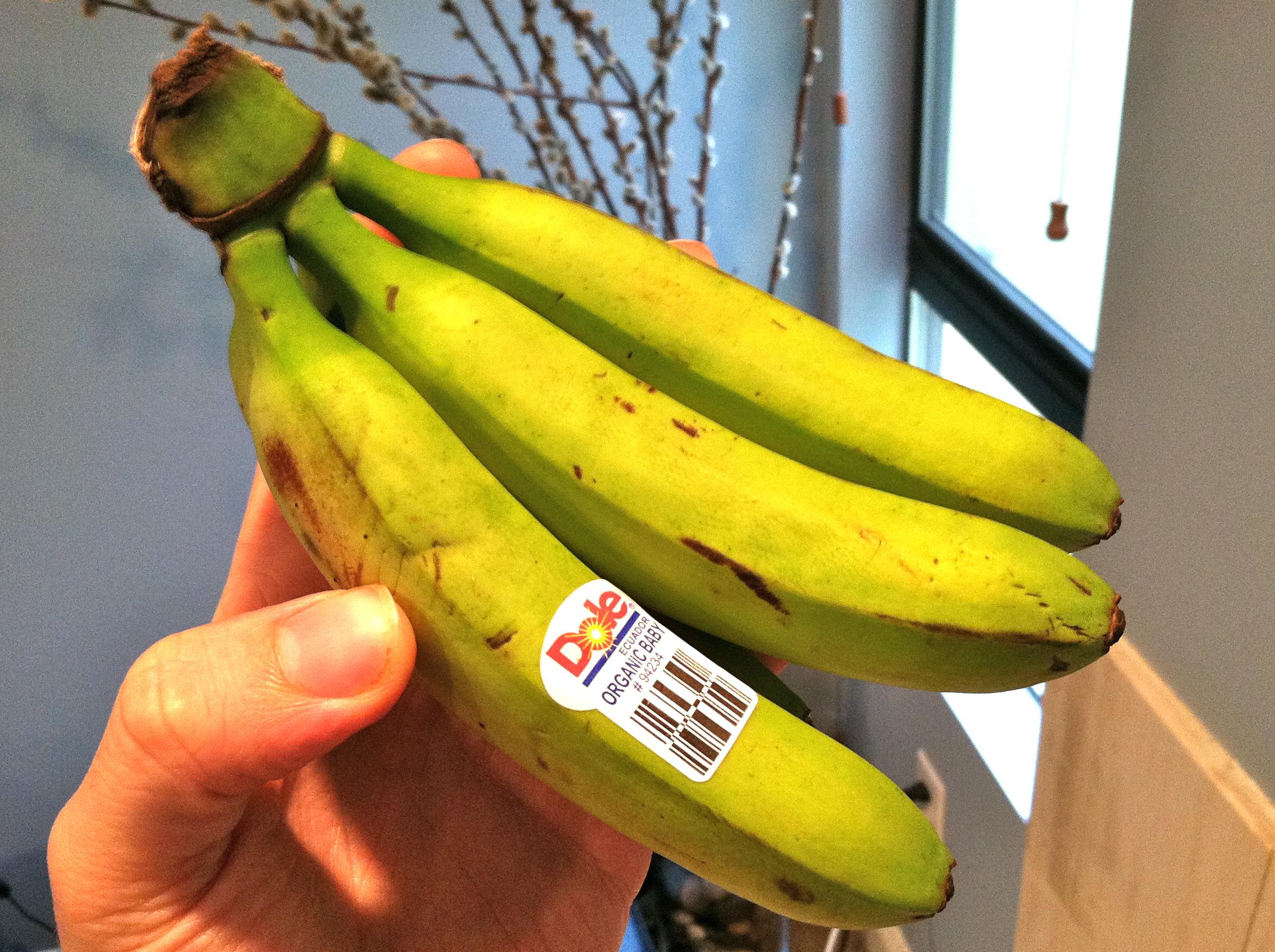 Baby bananas photo