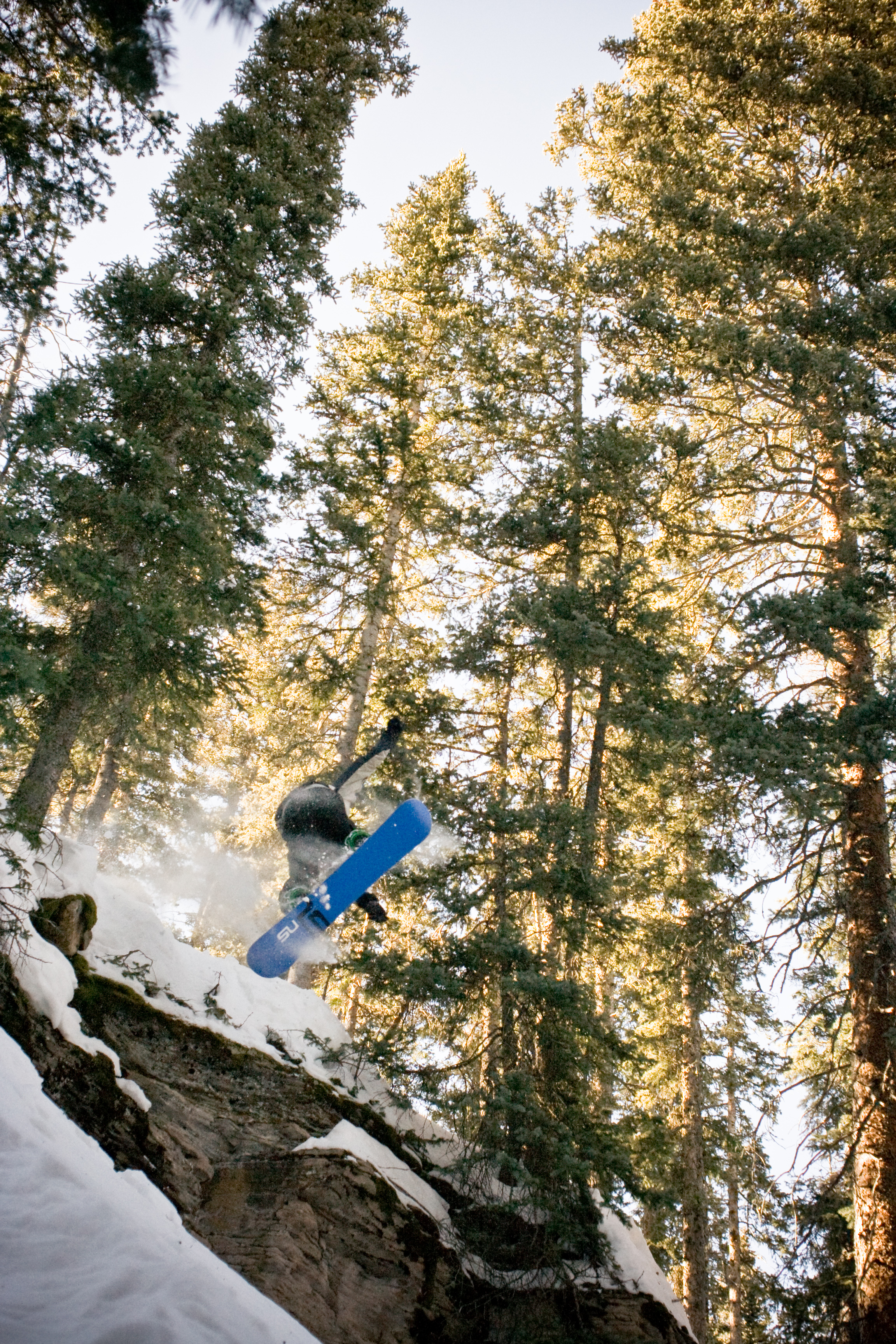 Backcountry Snowboard Air, Action, Snow, Trick, Trees, HQ Photo