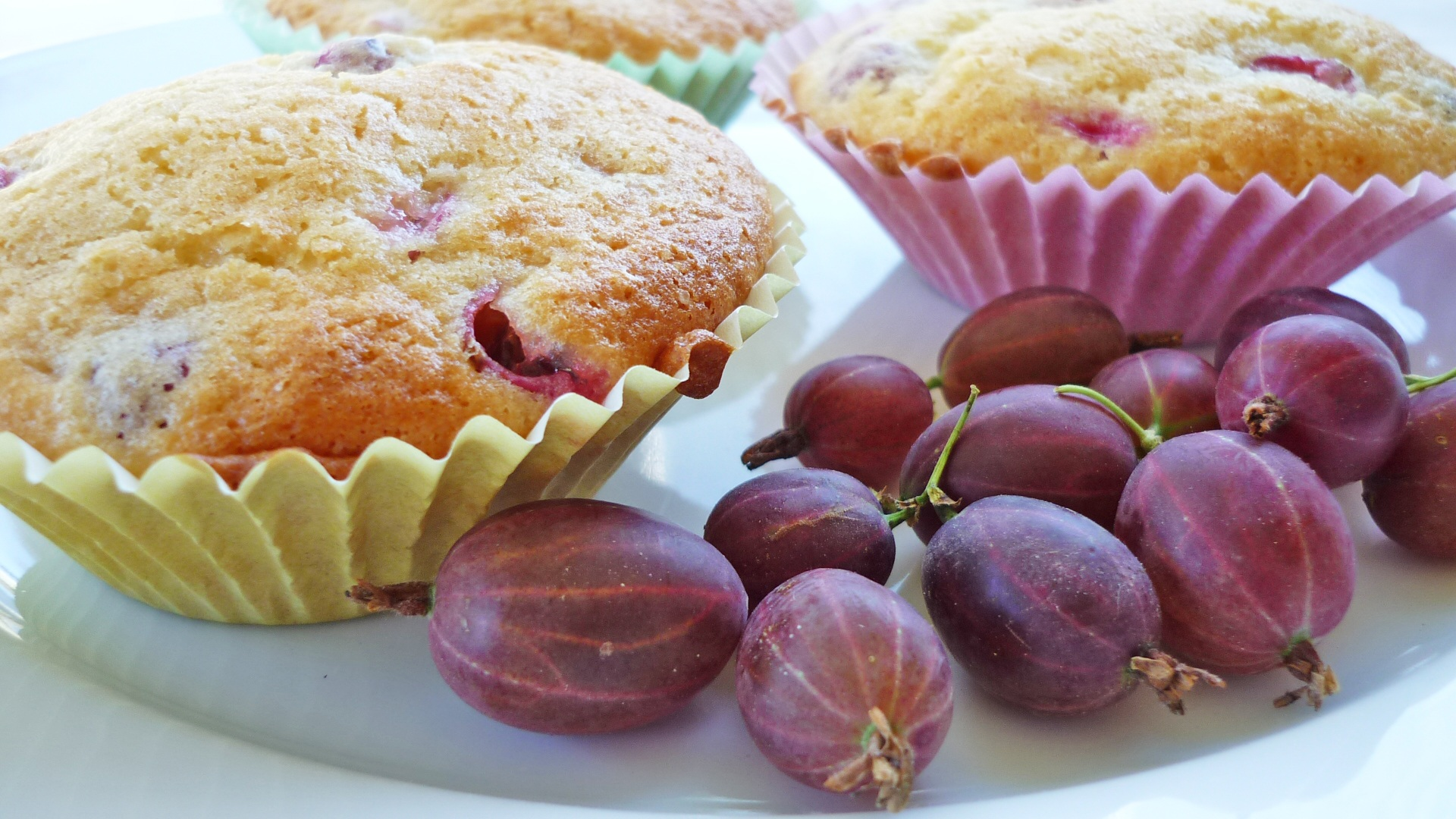 Baked muffins photo
