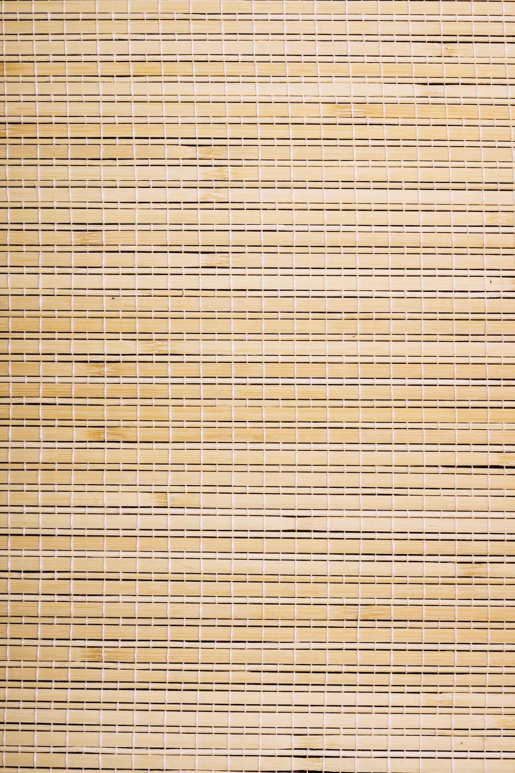 bamboo background, Image, Wallpaper, Vibrant, Texture, HQ Photo