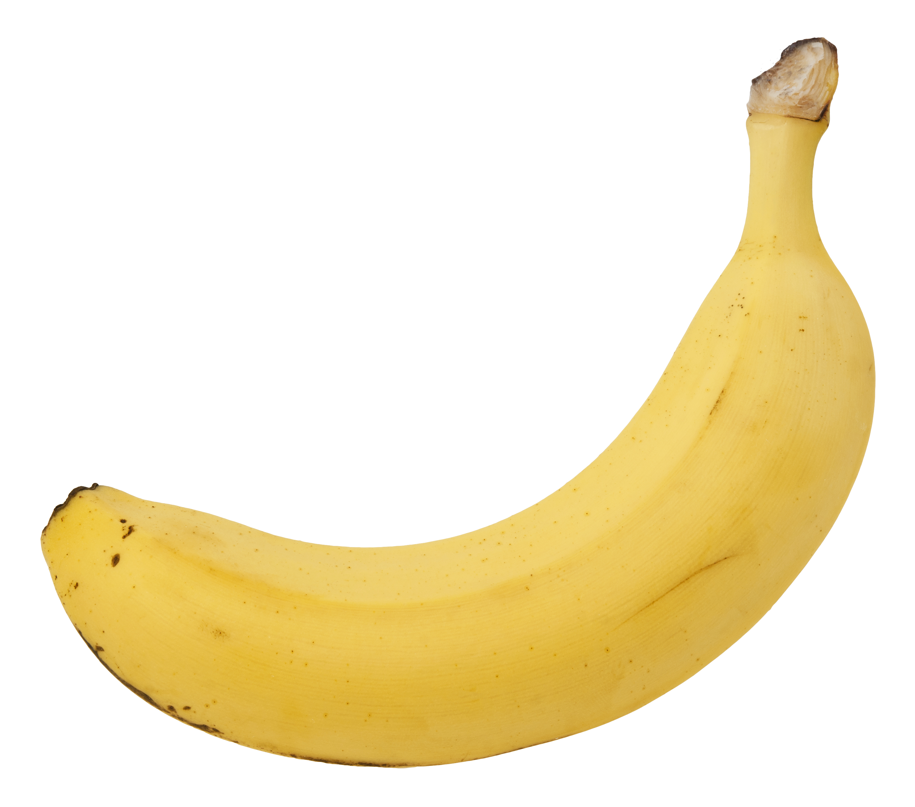 File:Banana-Single.jpg - Wikimedia Commons