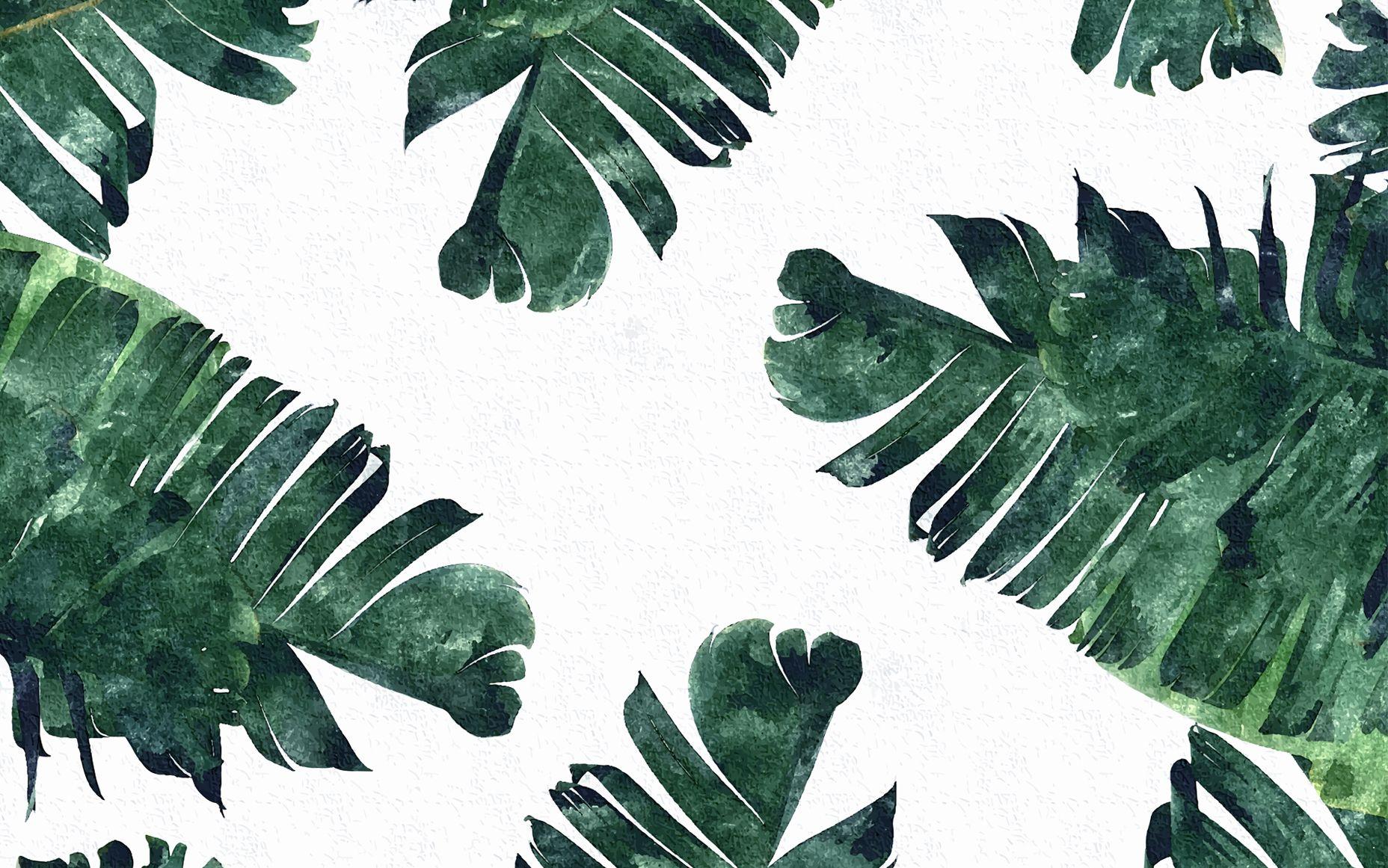 Banana-Leaf desktop wallpaper   p a t t e r n s   Pinterest ...