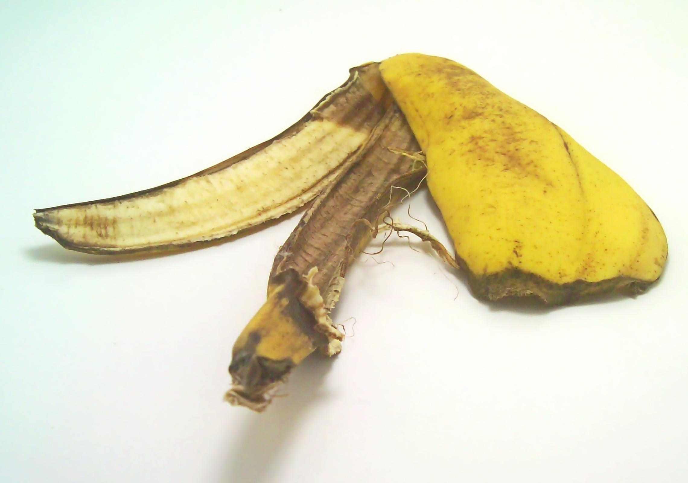 Banana peel, Old, Peel, Rotten, Yellow, HQ Photo