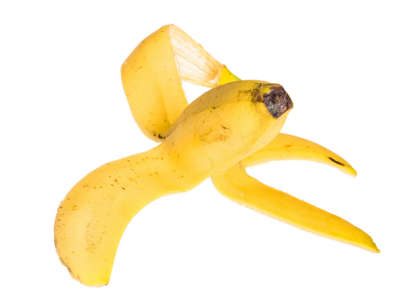 banana peel, Banana, Risk, Nature, Nobody, HQ Photo