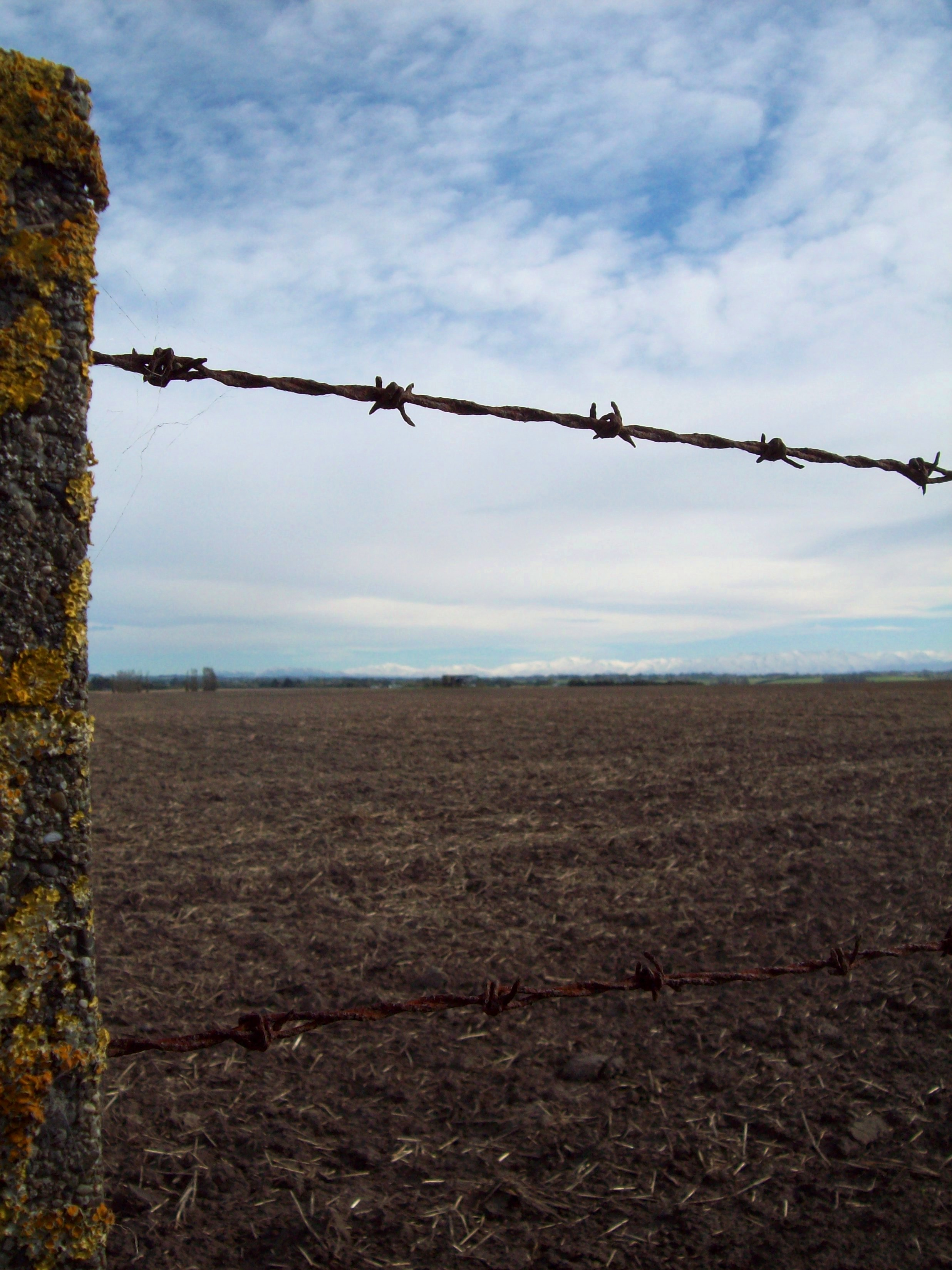 Free photo: Barb wire fence, South Canterbury - Pasture, Nz, Post ...