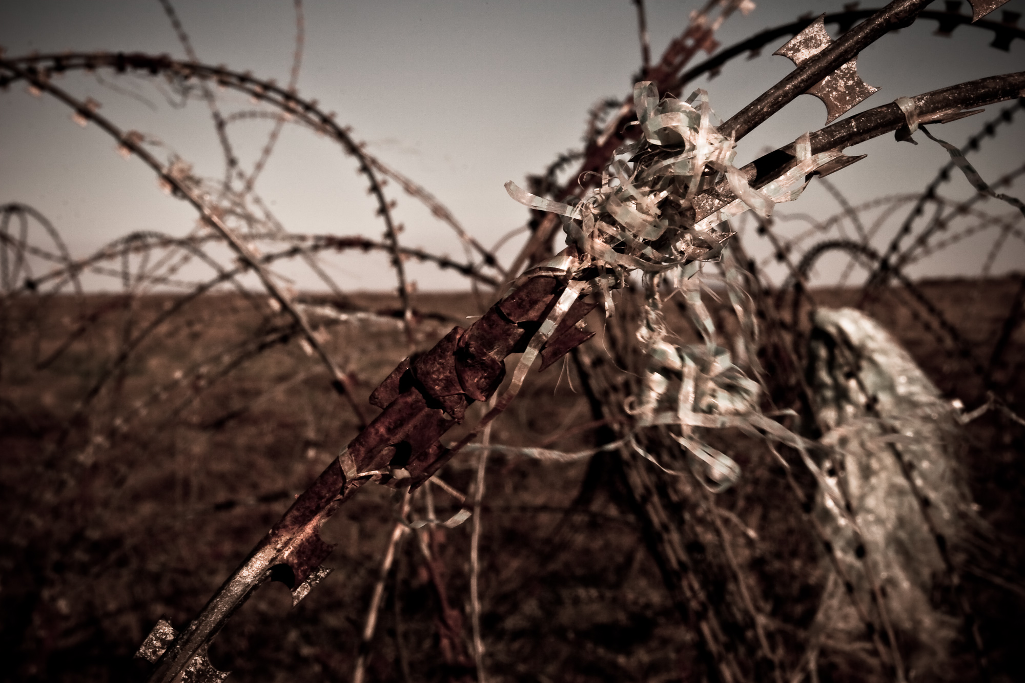 Barbed Wire, Abstract, Barbed, Barbedwire, Industrial, HQ Photo