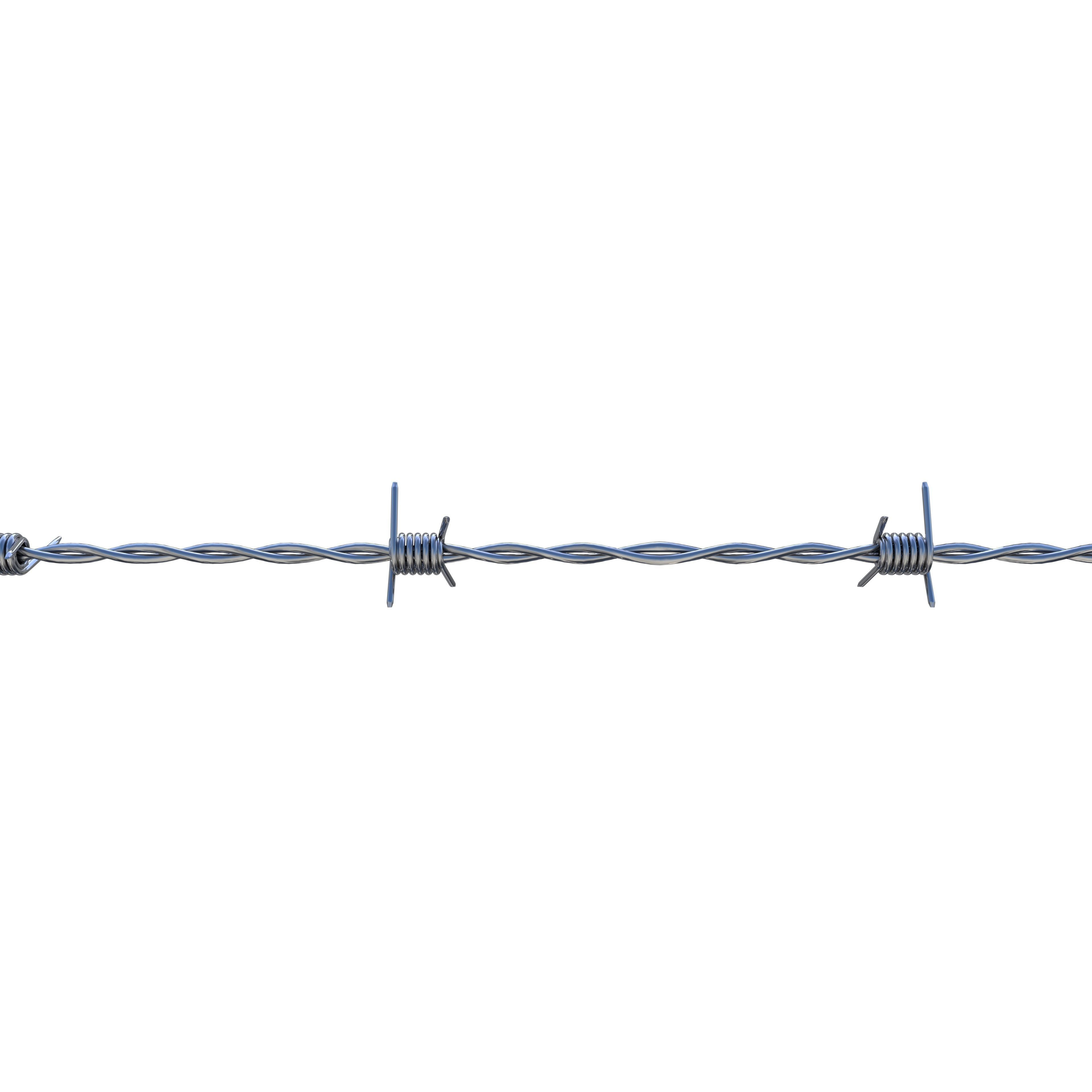 Barb Wire Chrome 3D asset | CGTrader